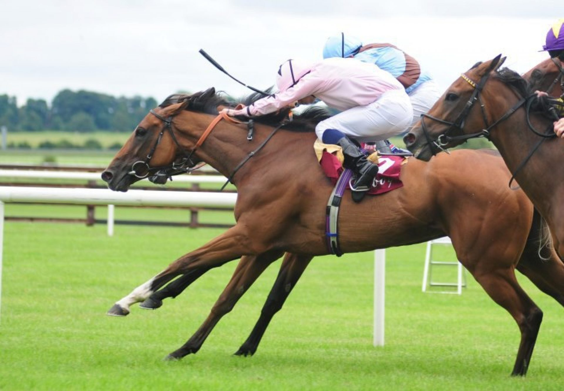 Mango Diva (Holy Roman Emperor) winning the Gr.2 Kilboy Estate Stakes at the Curragh