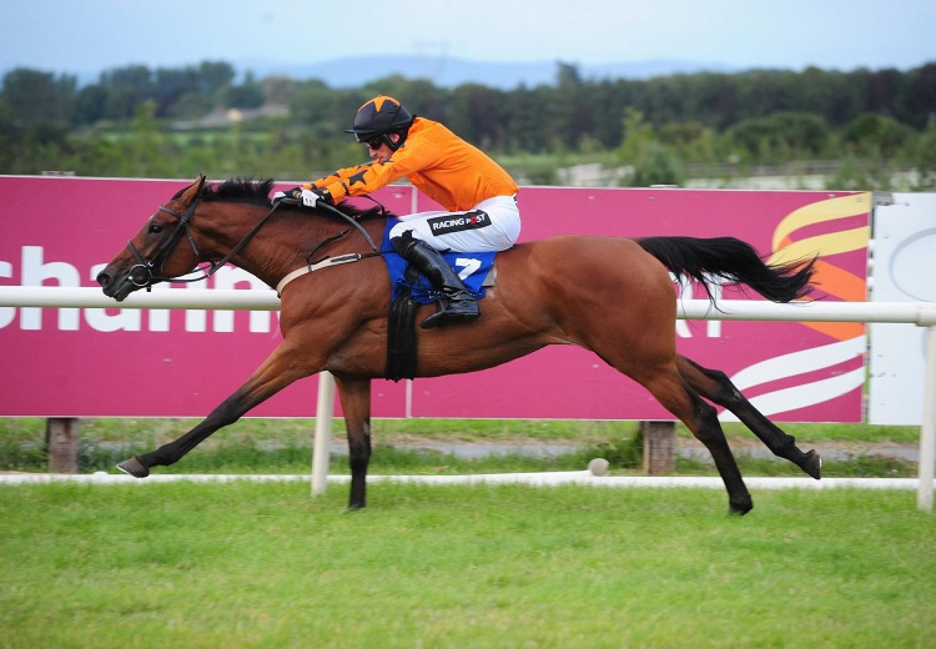 Escape Footwear (Mahler) winning a hurdle race at Tramore