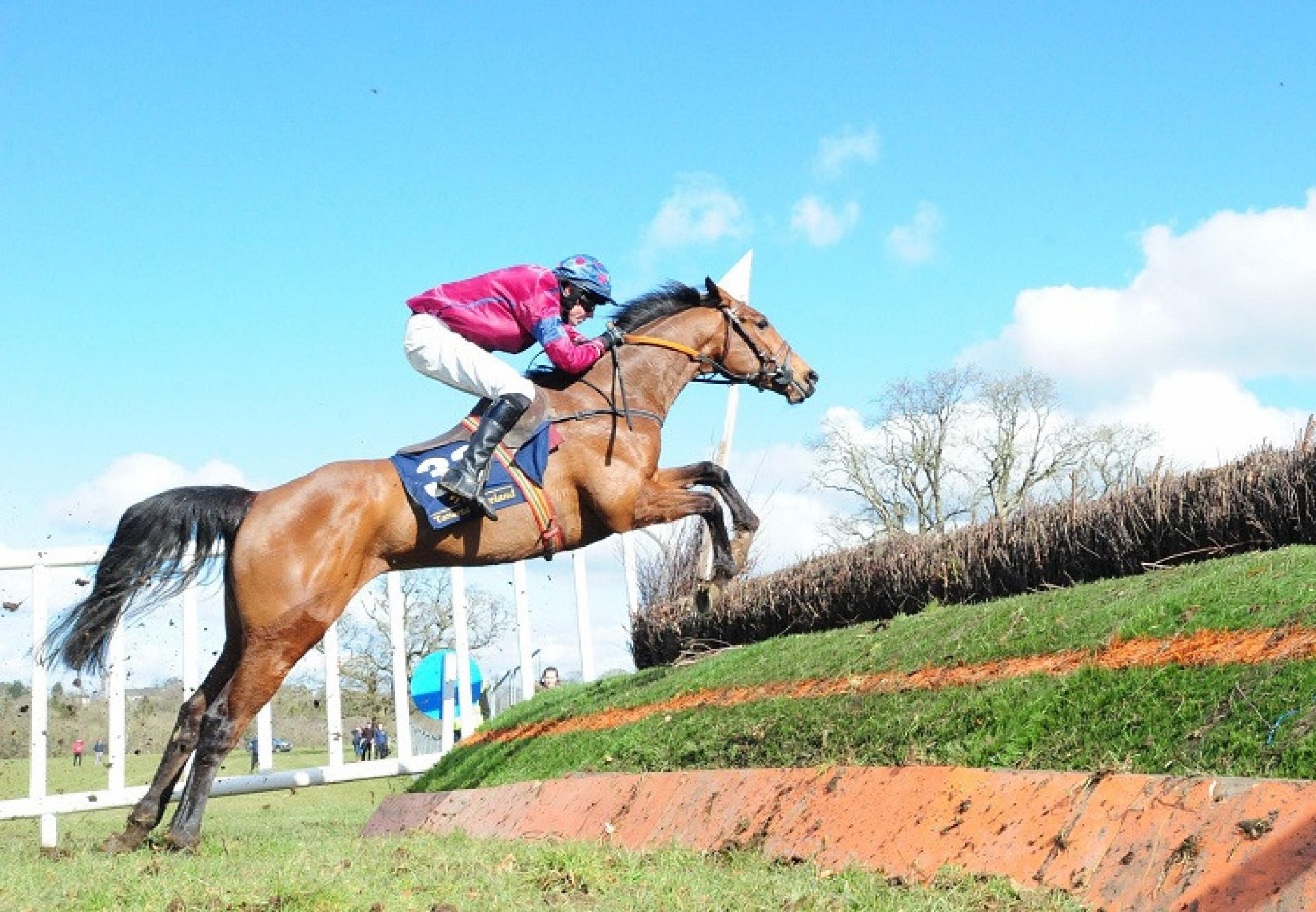 Treasure Dillon (San Frontieres) winning a point-to-point at Durrown