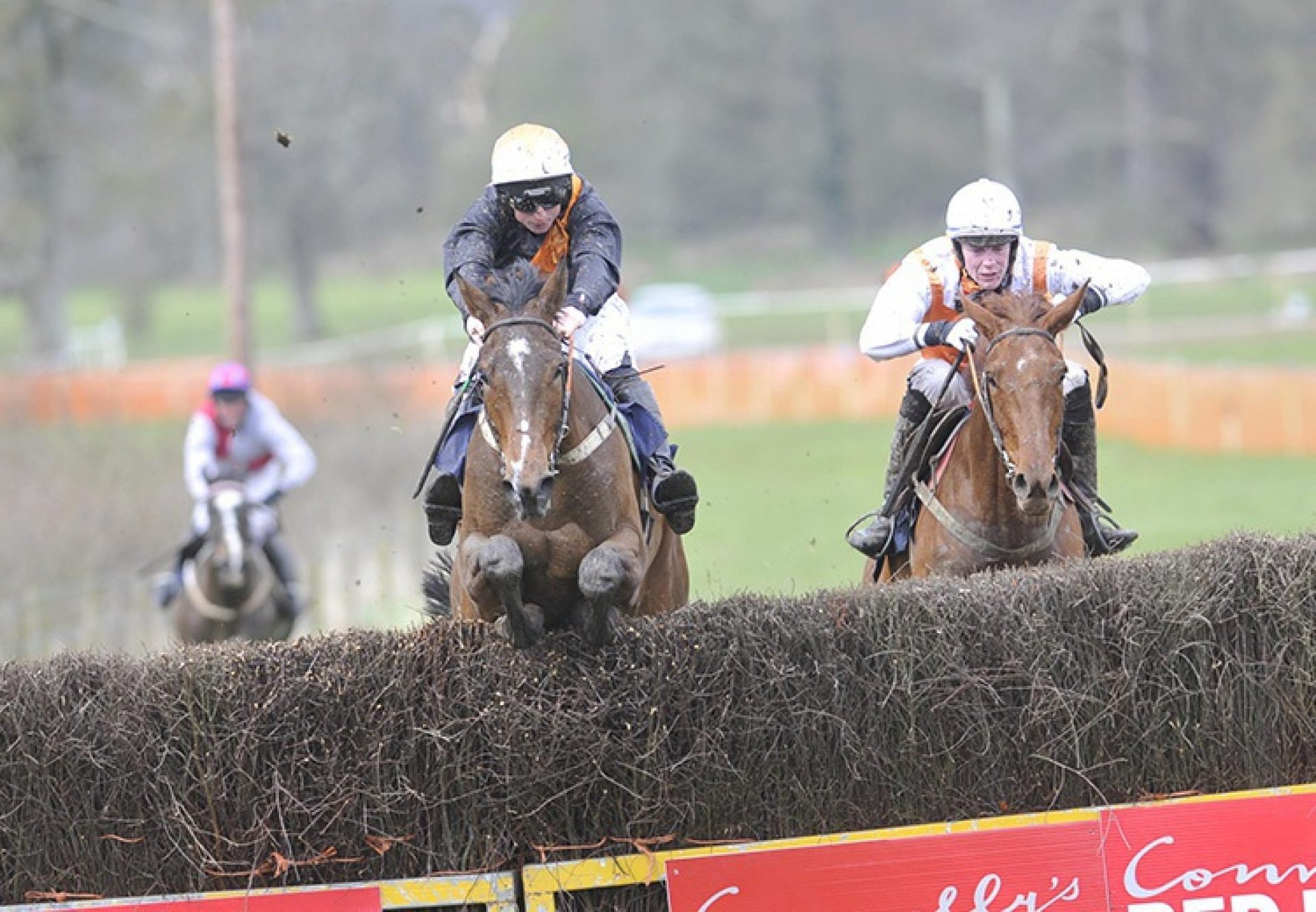 All Currencies (Getaway) winning a point-to-point at Bellurgan