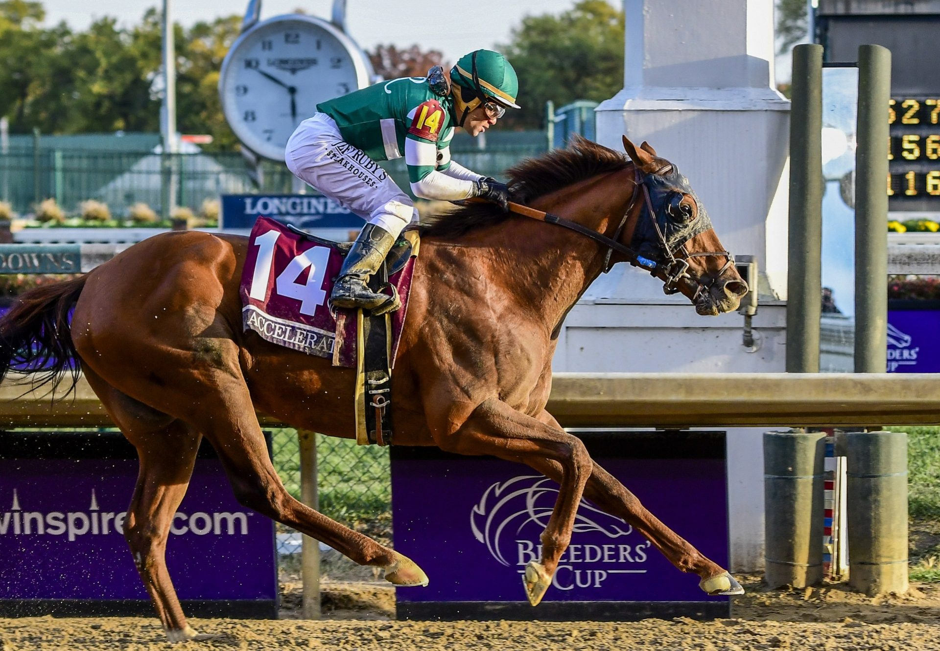 Accelerate (Lookin At Lucky) winning the G1 Breeders Cup Classic at Churchill Downs