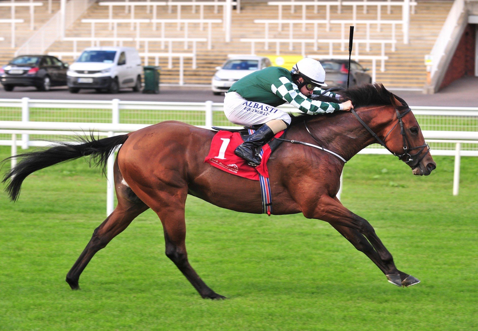 Ace Aussie (Australia) Wins His Maiden At Cork