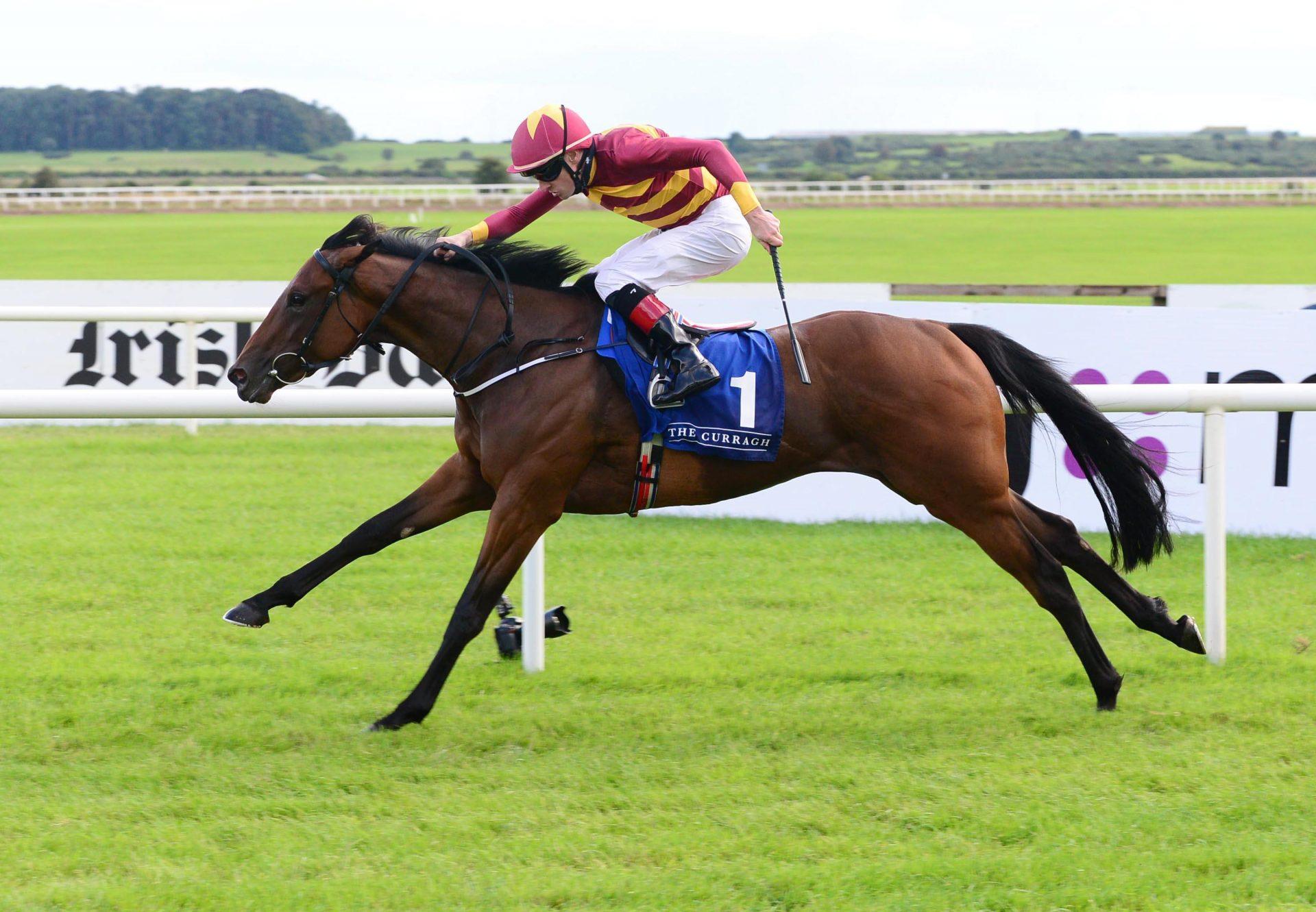 Agartha (Caravaggio) Wins Gr.2 Debutante Stakes at the Curragh