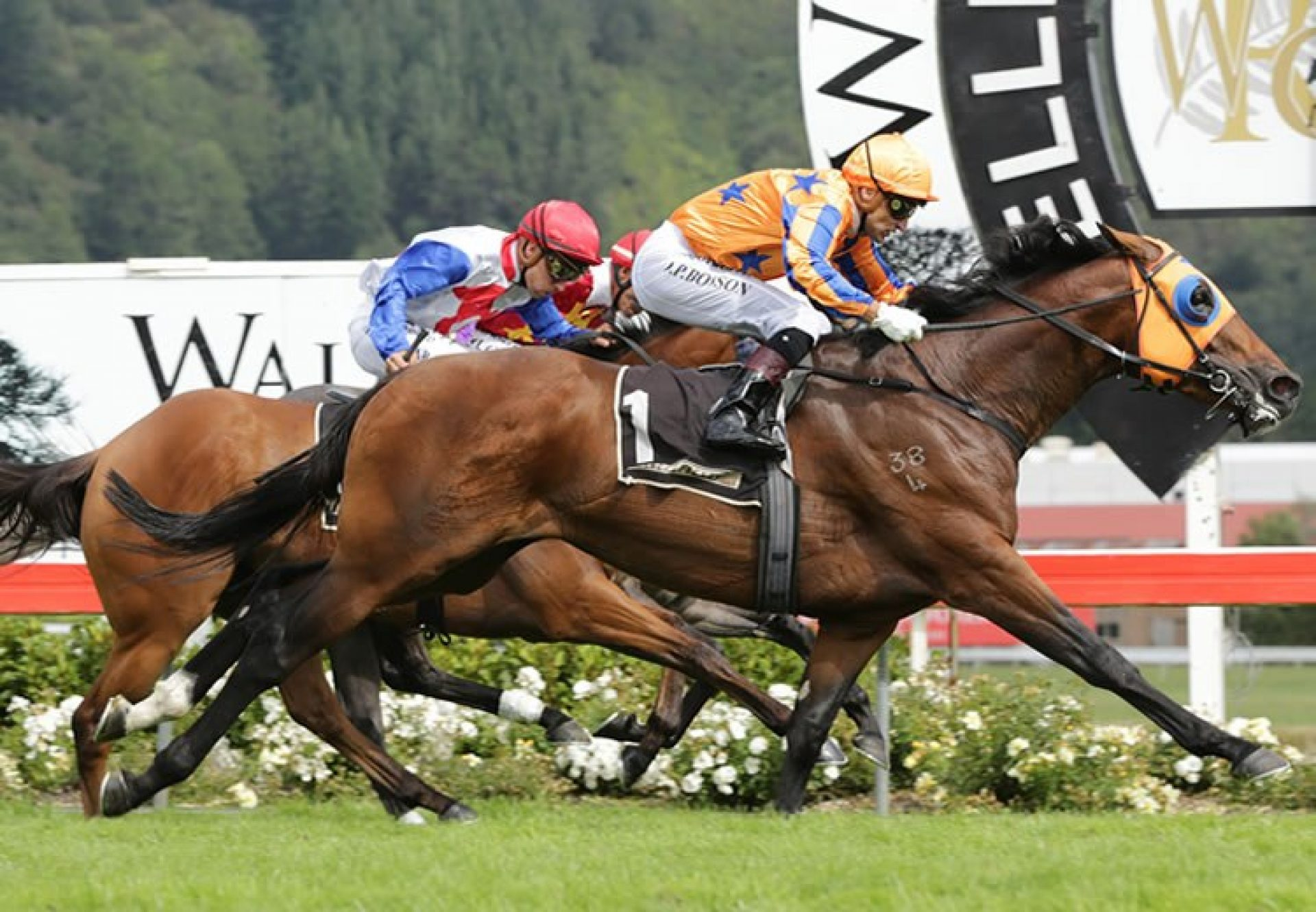 Age Of Fire (Fastnet Rock) winning the G1 New Zealand 2,000 Guineas