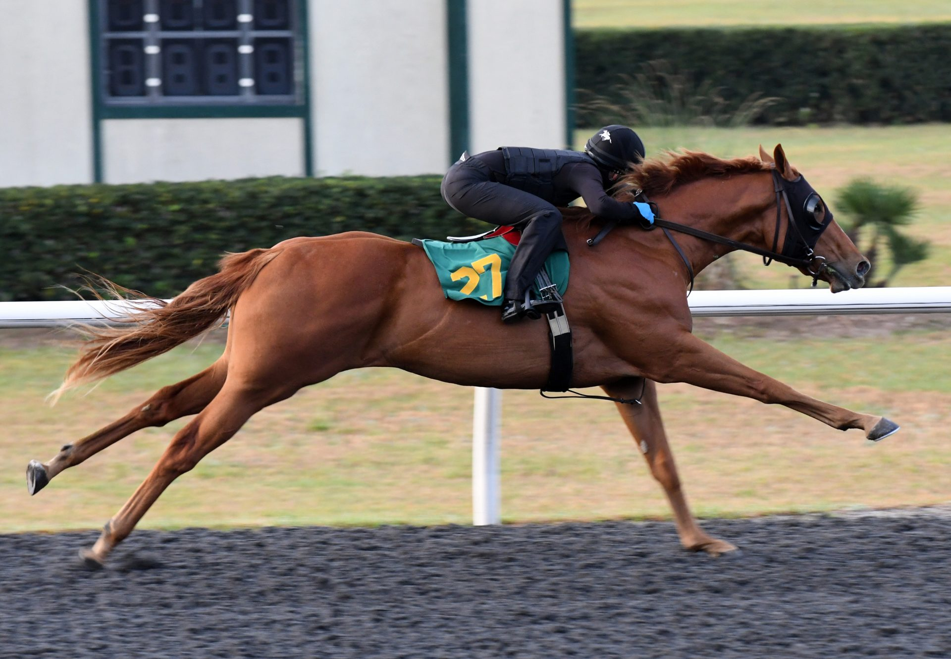 Air Force Blue X Dreamy Maiden Obs March Hip 27