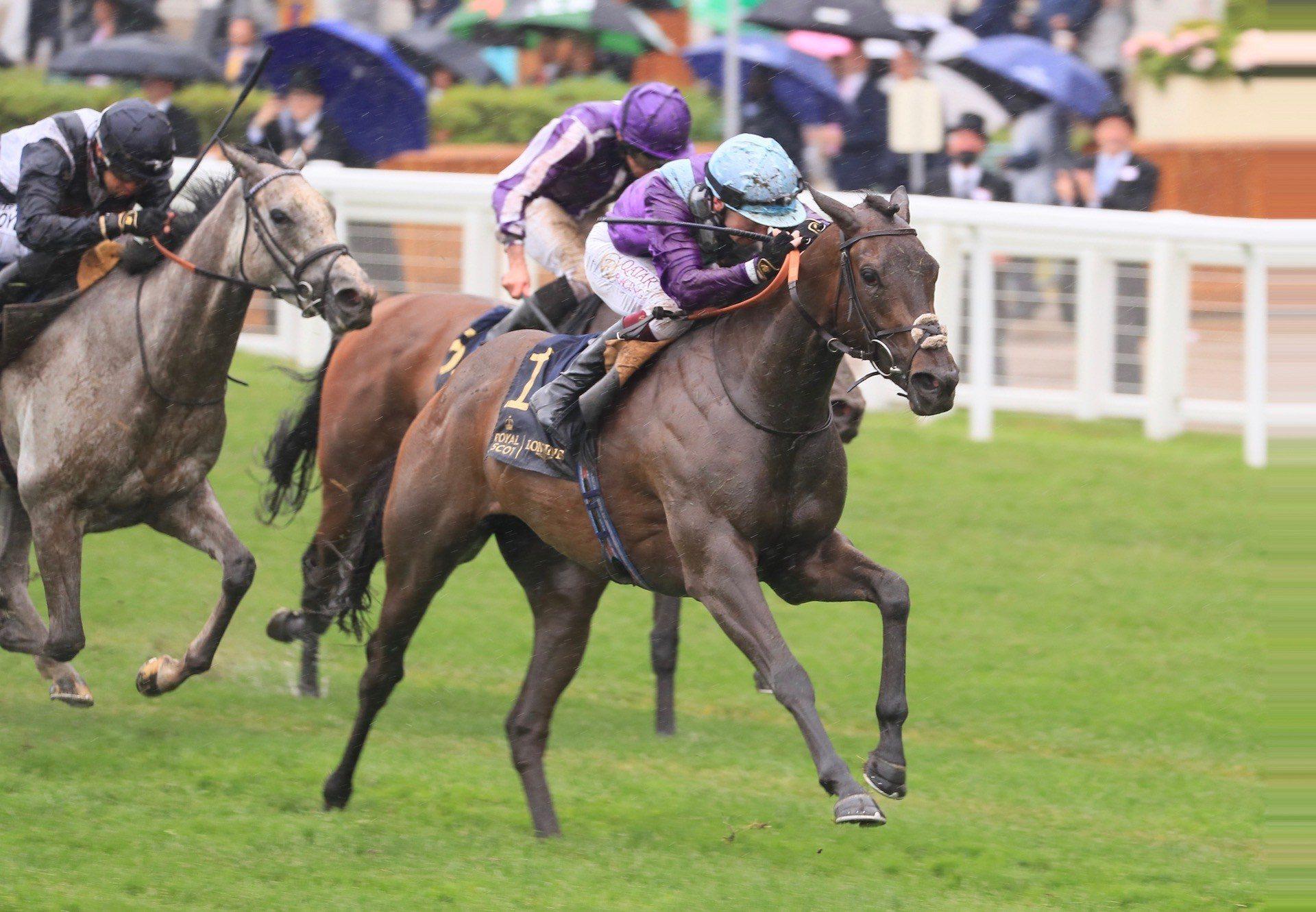 Alcohol Free (No Nay Never) Wins The Group 1 Coronation Stakes at Royal Ascot