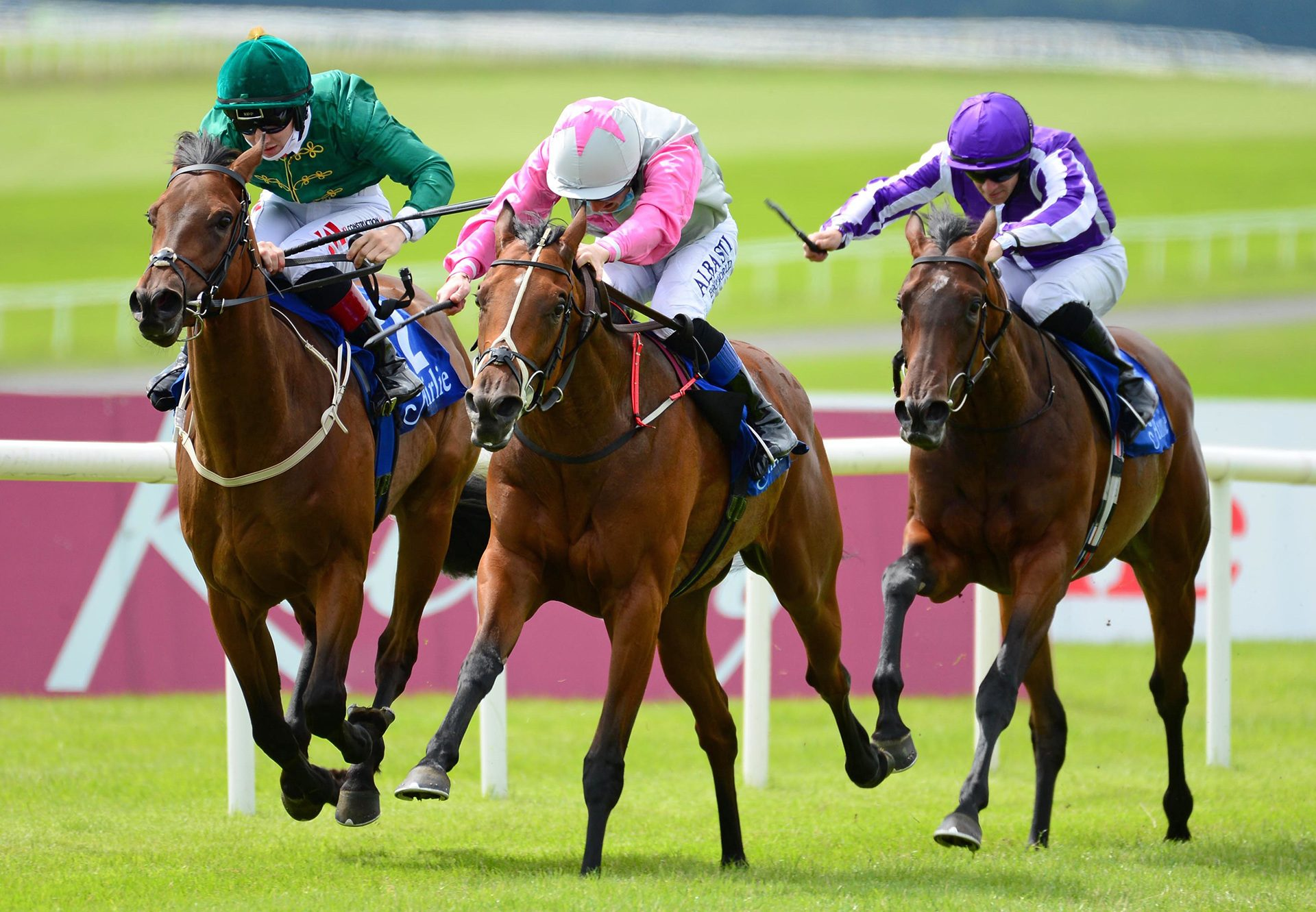 Aloha Star (Starspangledbanner) winning the Gr.2 Airlie Stud Stakes at the Curragh