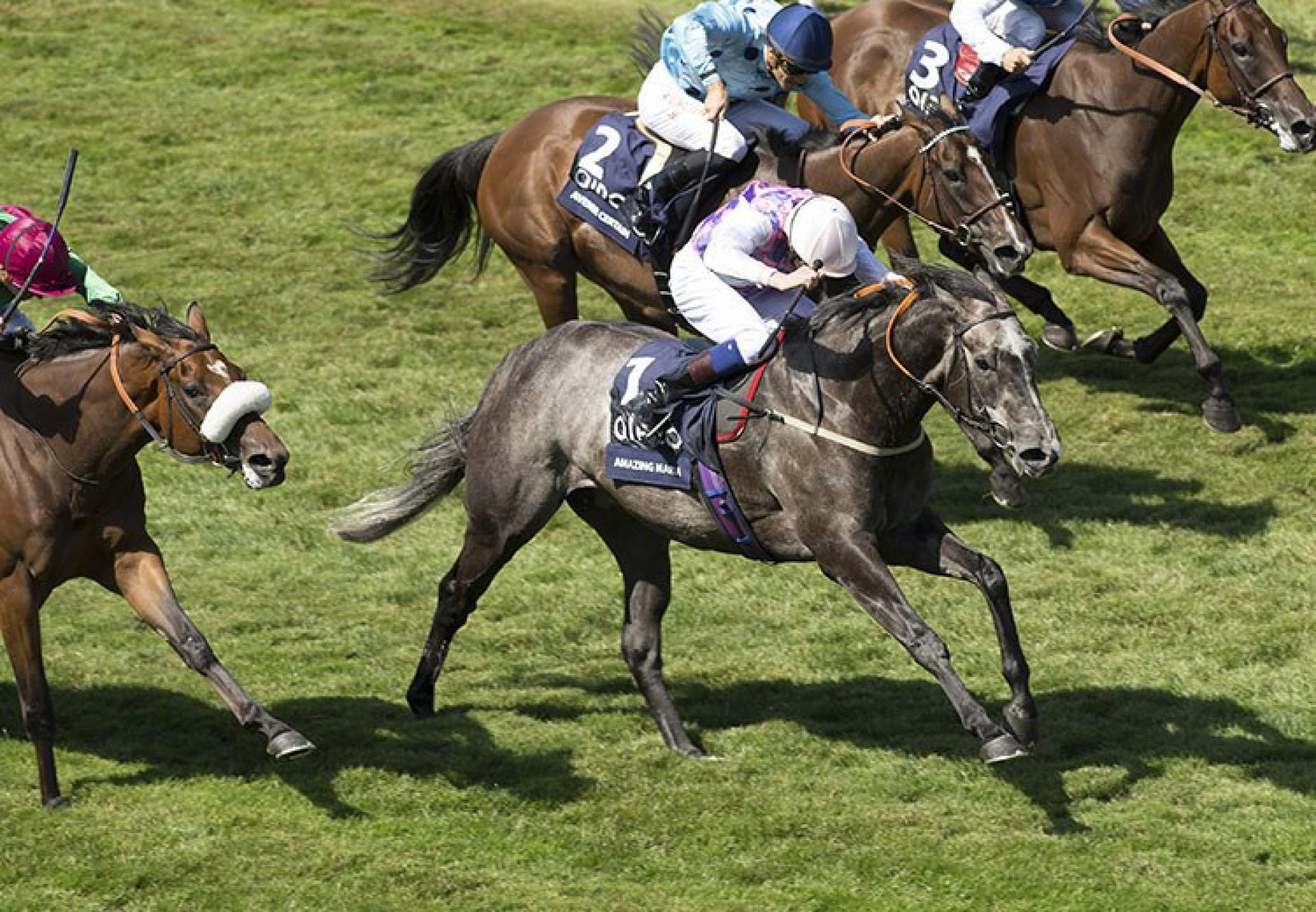 Amazing Maria (Mastercraftsman) winning the G1 Falmouth Stakes at Newmarket