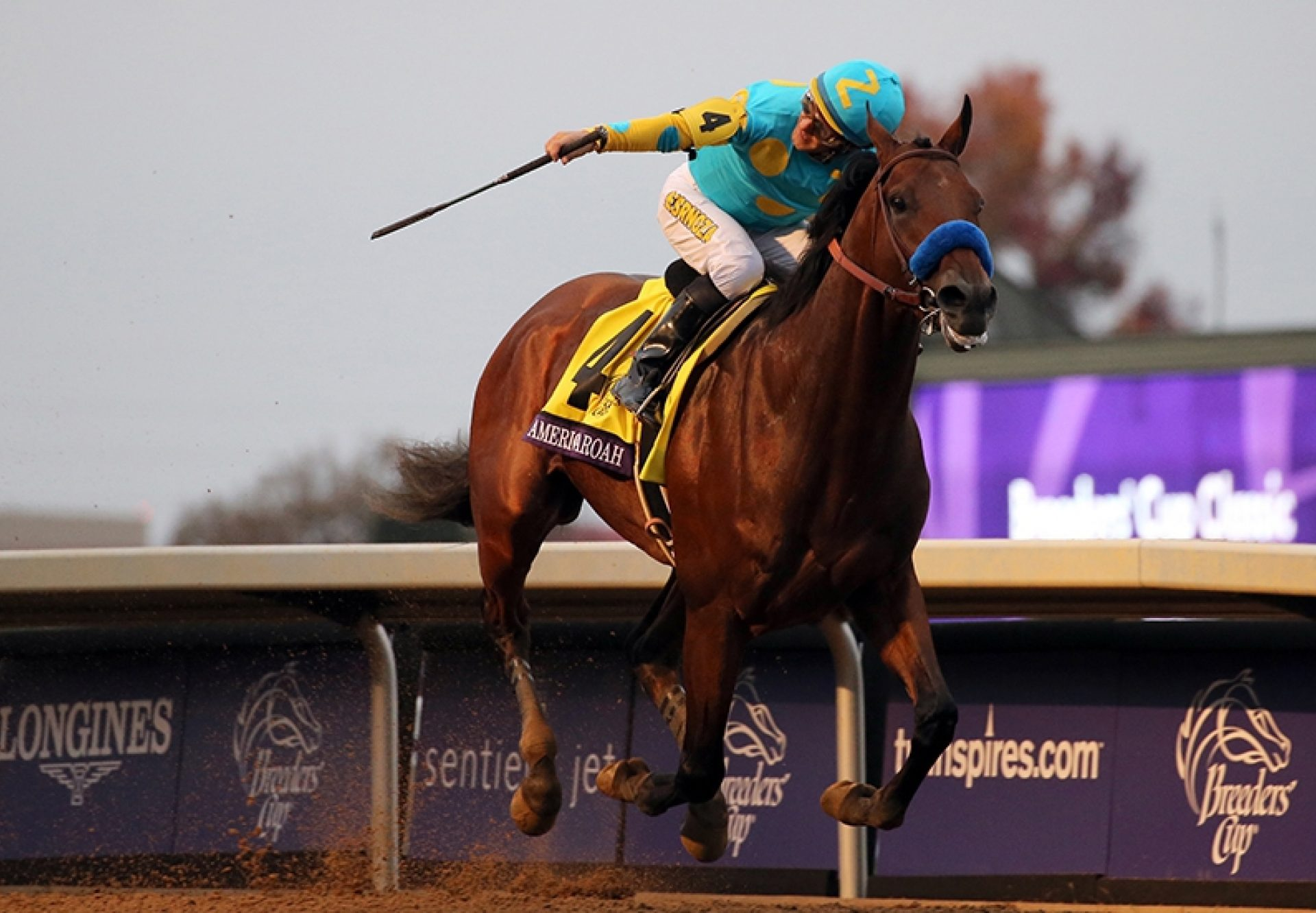 American Pharoah winning the Breeders Cup