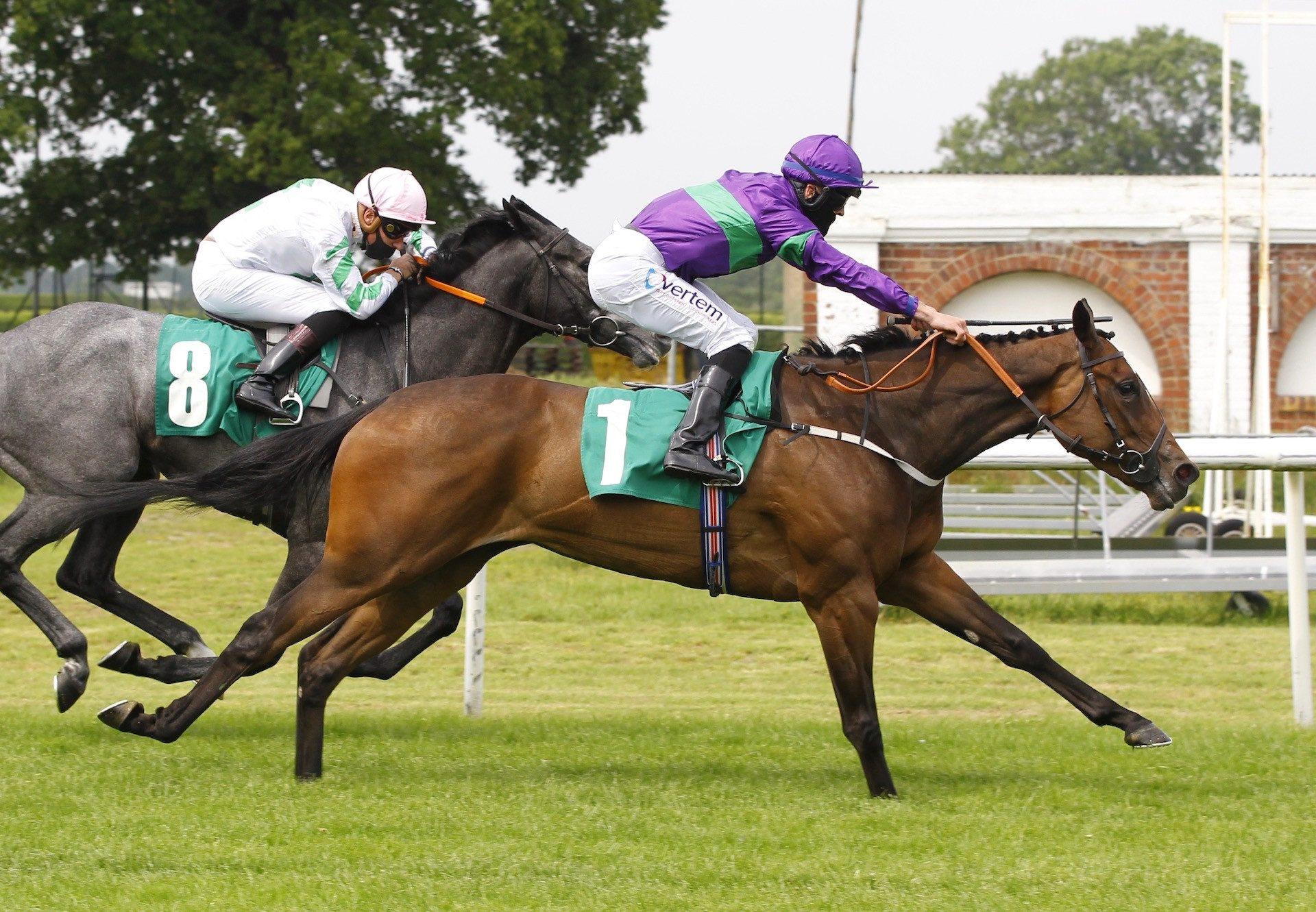 Angel Of The Glen (Gleneagles) winning at Thirsk