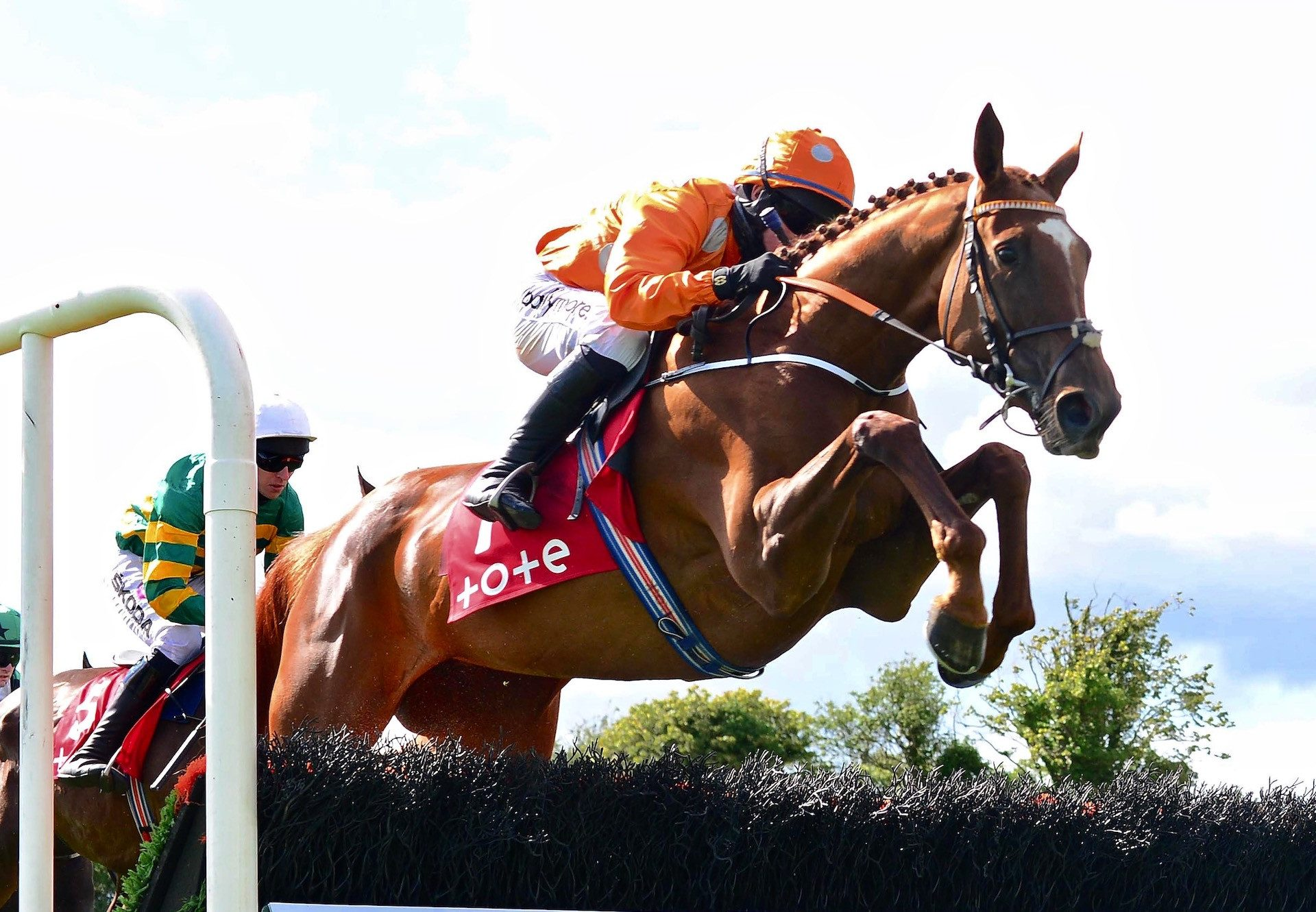 Annie G (Getaway) Wins The Listed Novice Hurdle At The Galway Festival