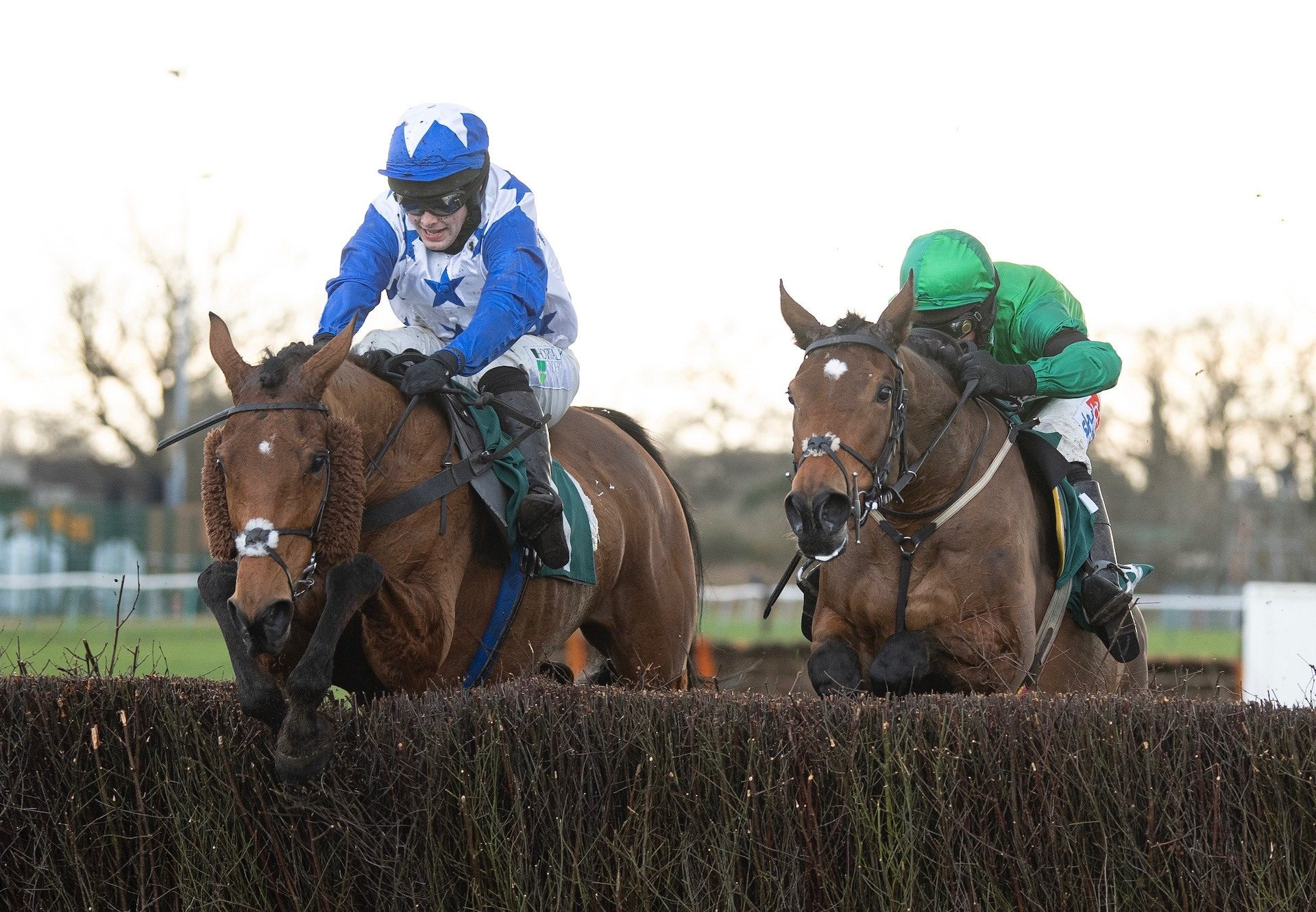 Annie Mc (Mahler) Wins The Listed Mares Chase At Warwick