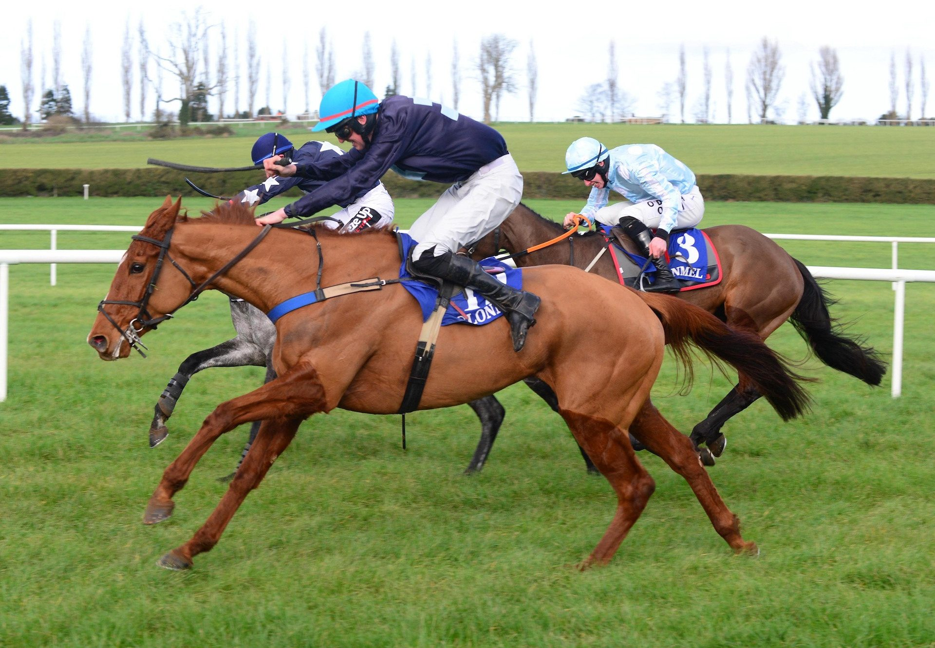 Annie Odds (Mahler) Wins The Mares Maiden Hurdle At Clonmel