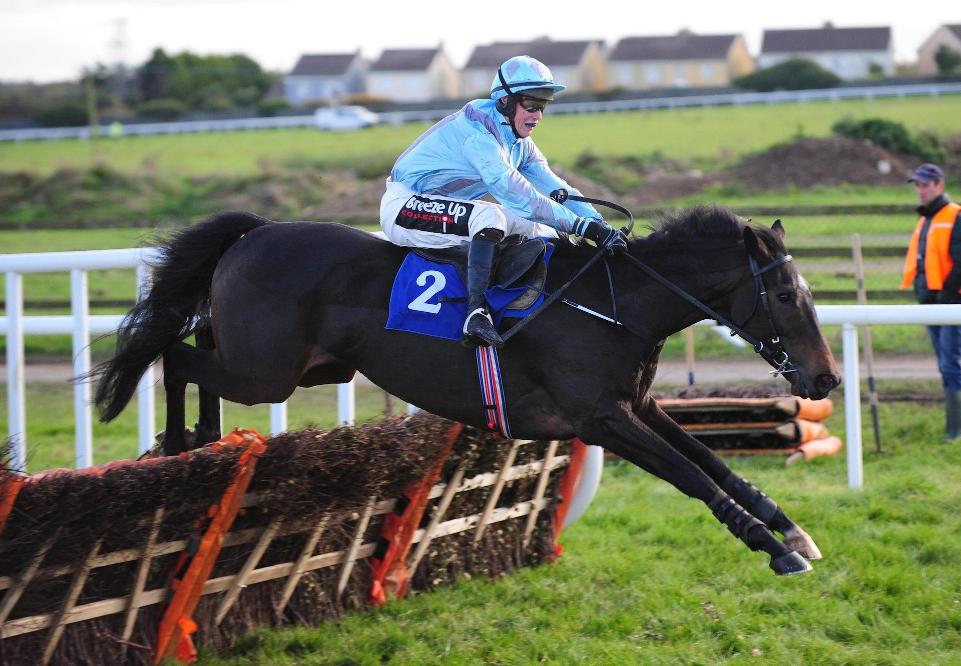 Anything Will Do (Westerner) Wins At Wexford