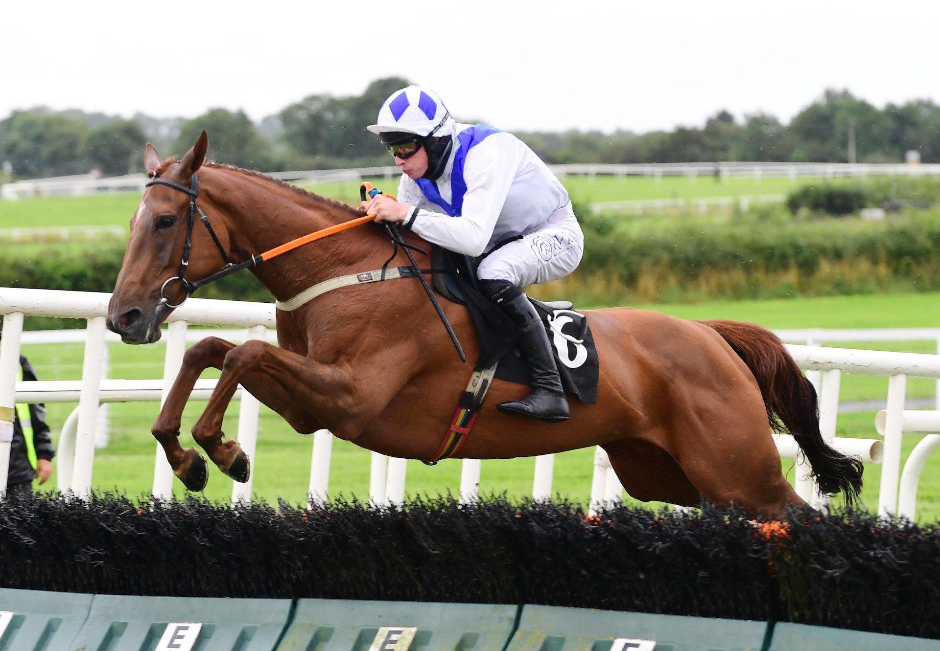 Apple Crumble (Getaway) Wins The Novices Hurdle At Kilbeggan