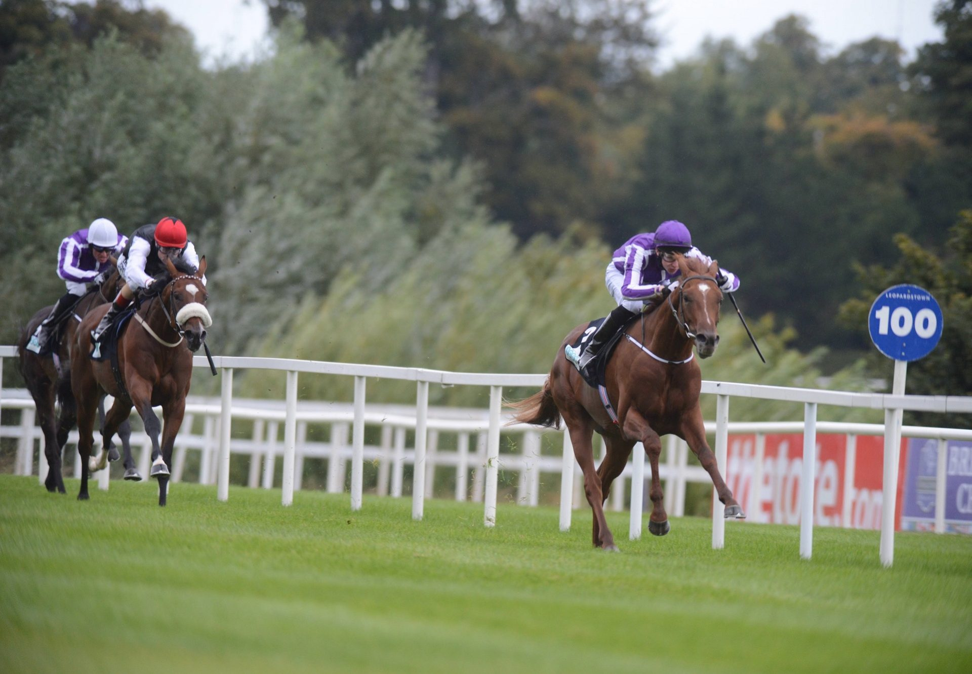 Australia Winning The G3 Breeders Cup Juvenile Trial At Leoaprdstown