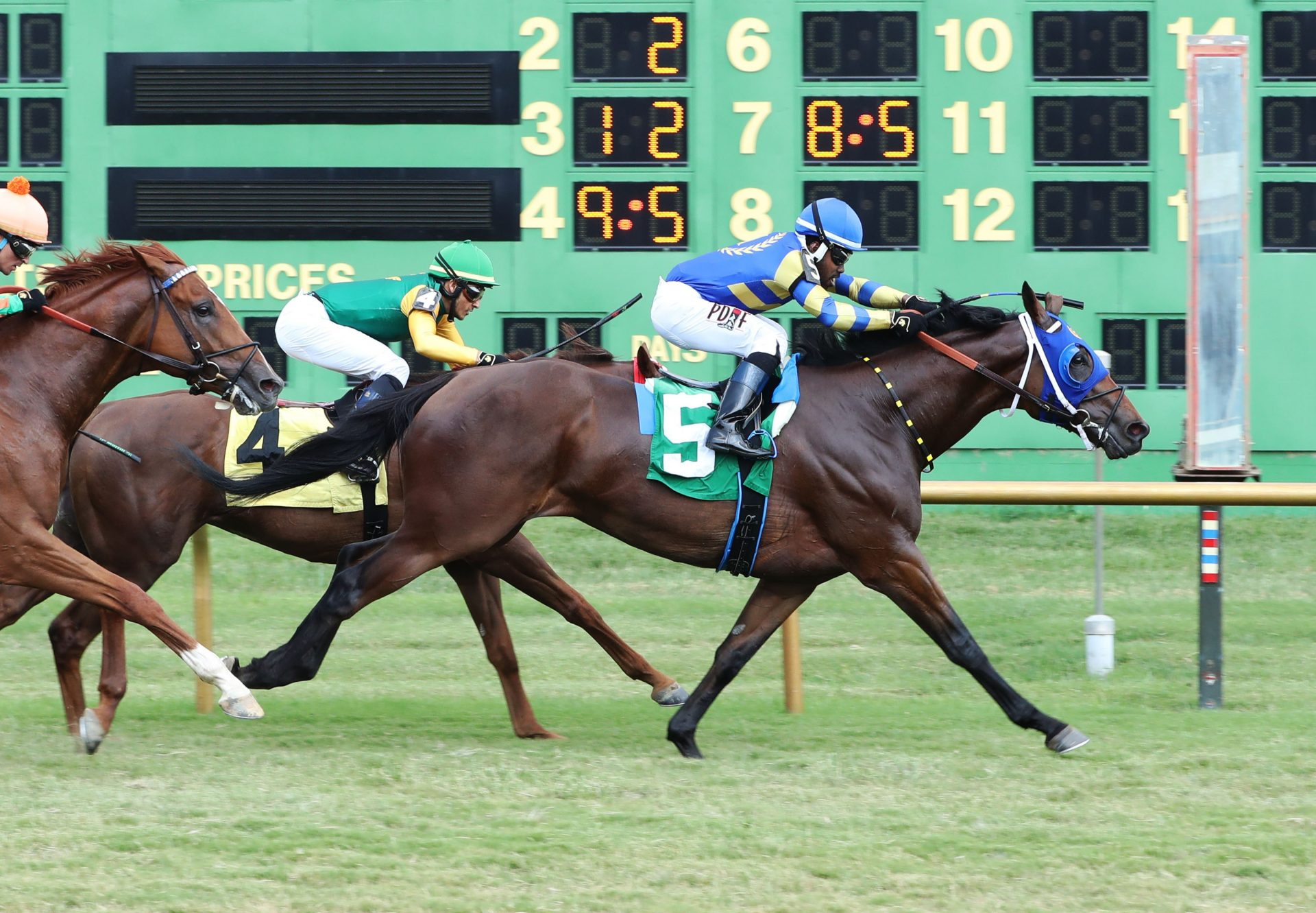 Betwithbothhands (Uncle Mo) winning the Kentucky Downs TVG Preview Mint Million