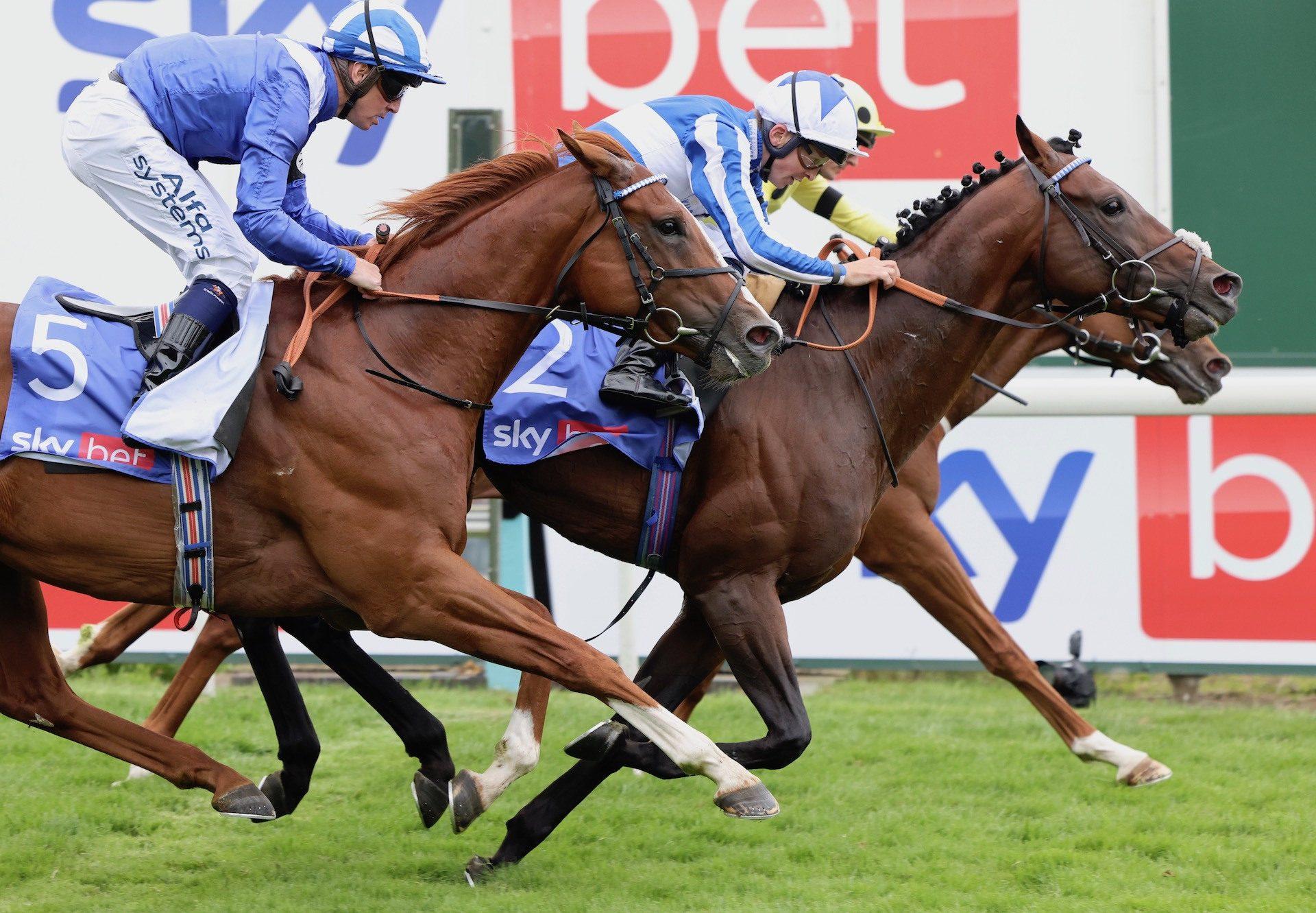 Bangkok (Australia) Lands The Group 2 York Stakes at York