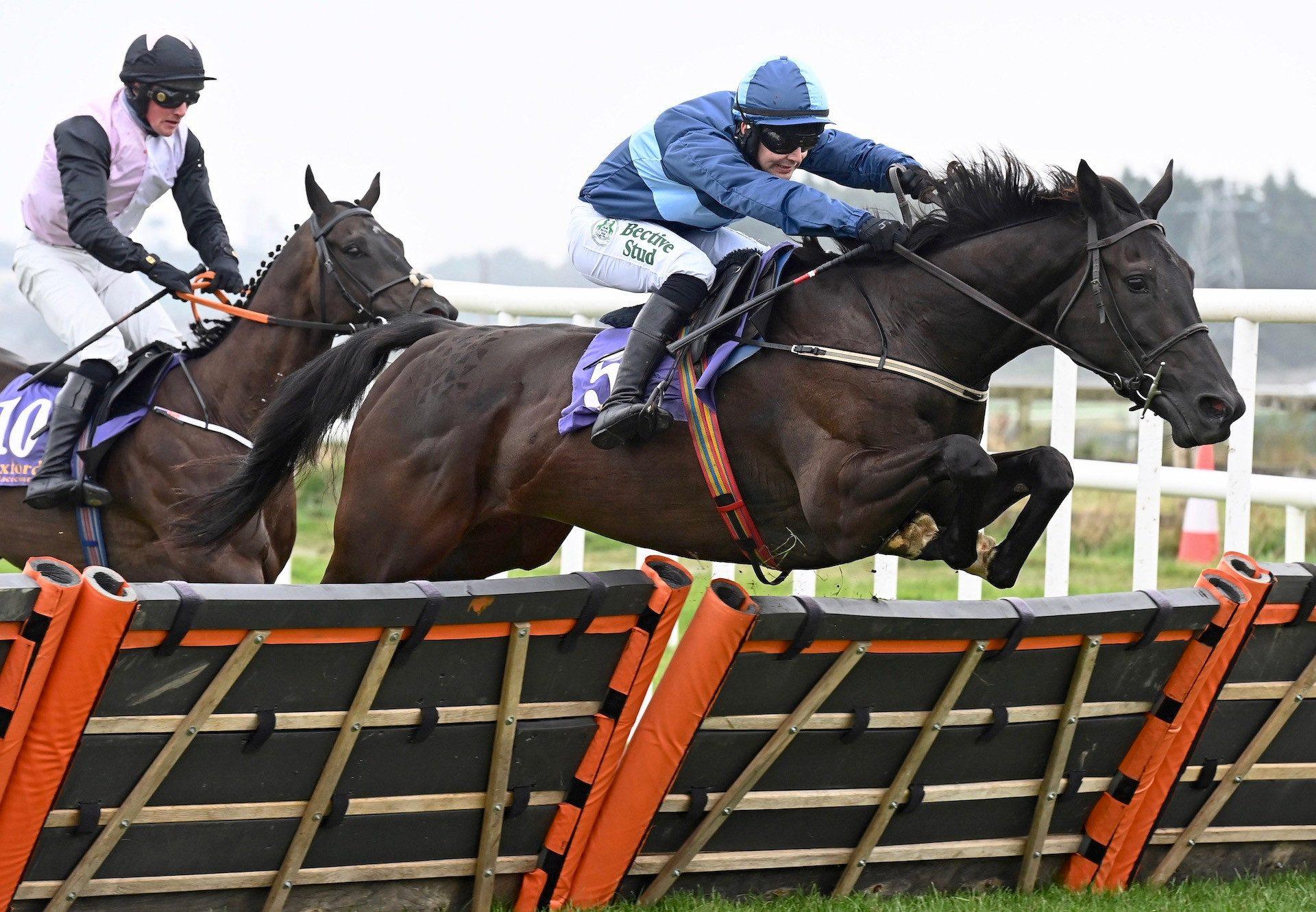 Barnacullia (Ocovango) Wins His Maiden Hurdle At Wexford