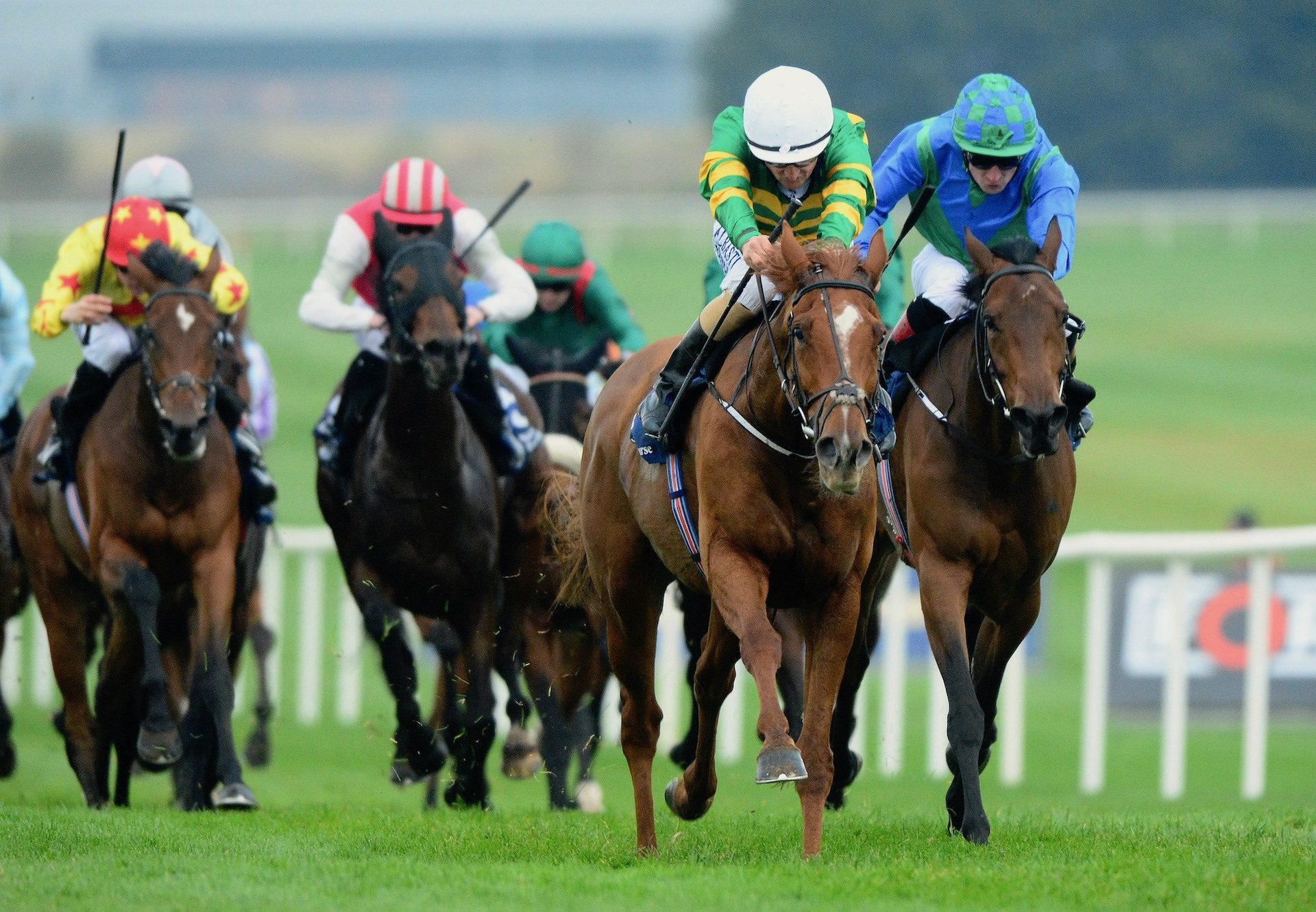 Barrington Court (Mastercraftsman) Wins The Listed Bluebell Stakes at Naas