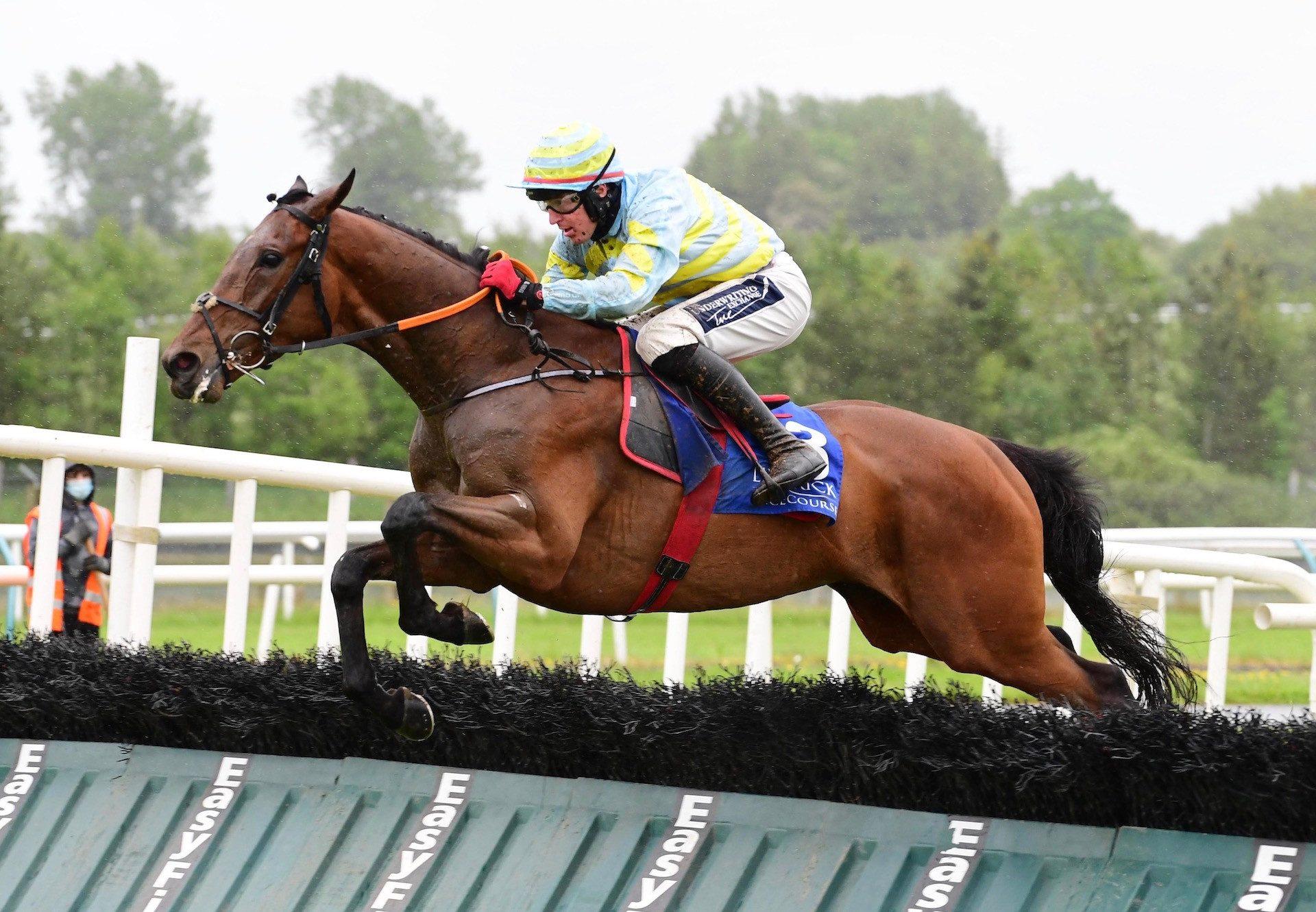 Benbulben Boy (Yeats) Wins The Maiden Hurdle At Limerick