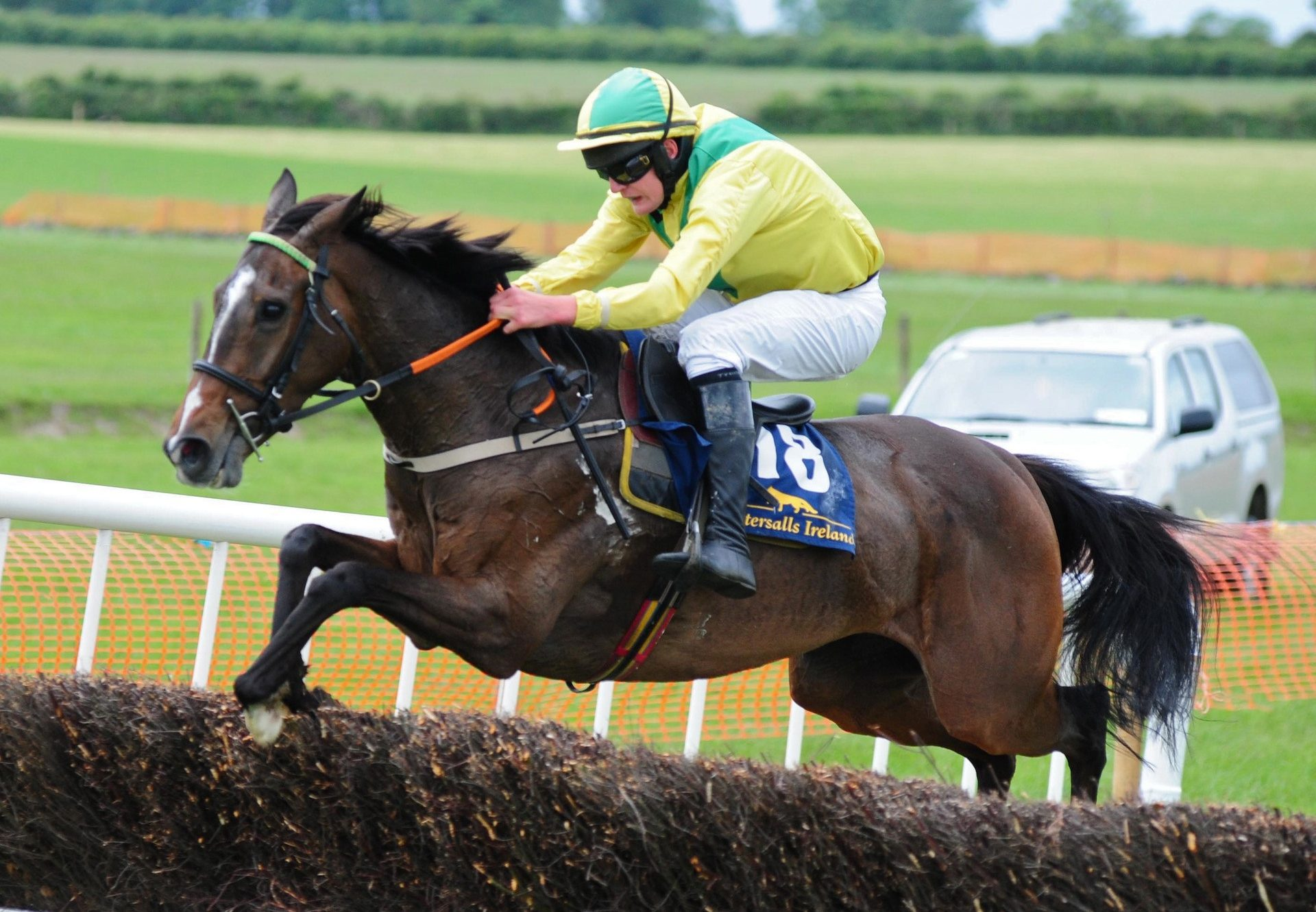 Bintheredonethat (Yeats) Wins At Ballingarry