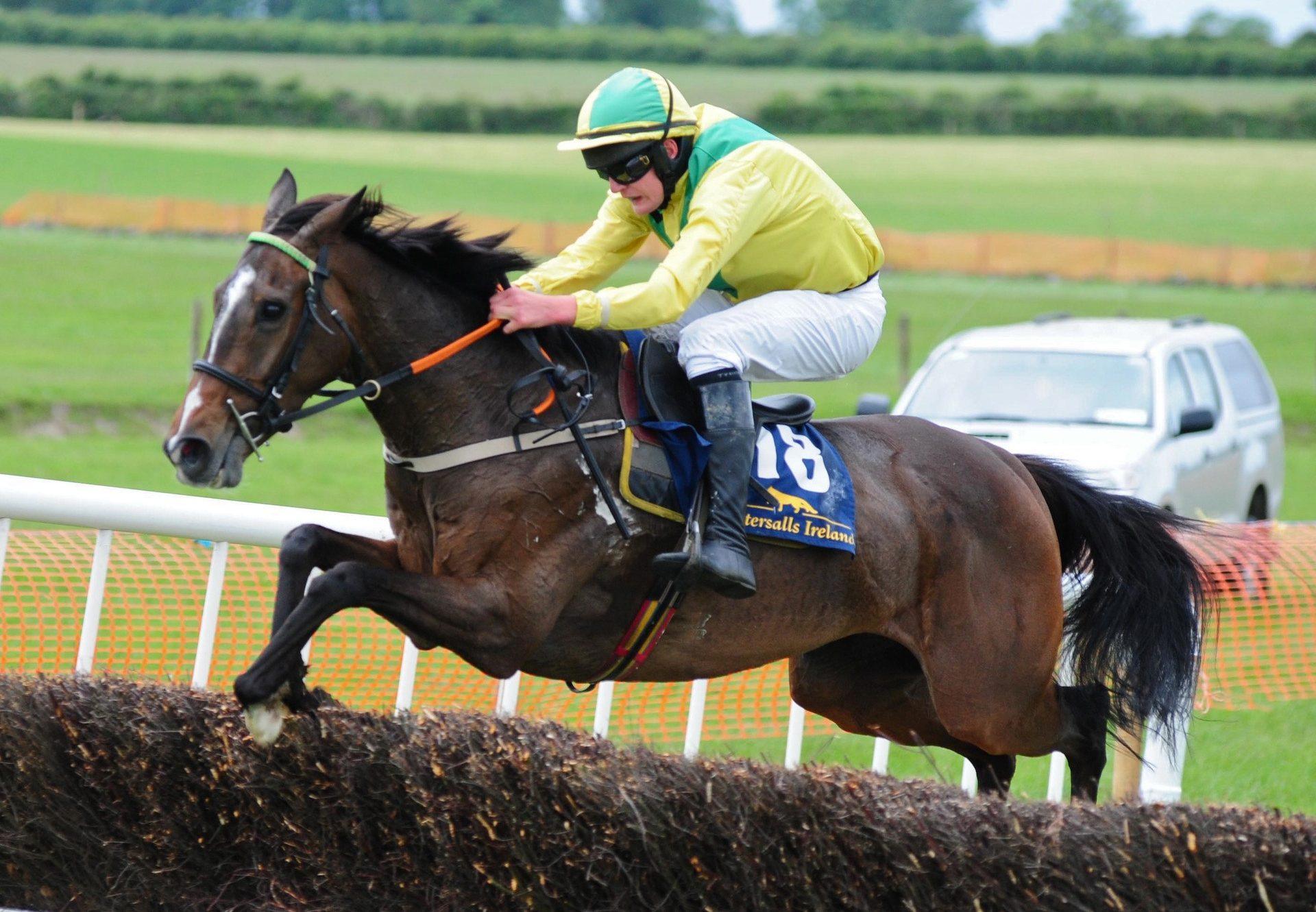 Bintheredonethat (Yeats) Wins At Ballingarry