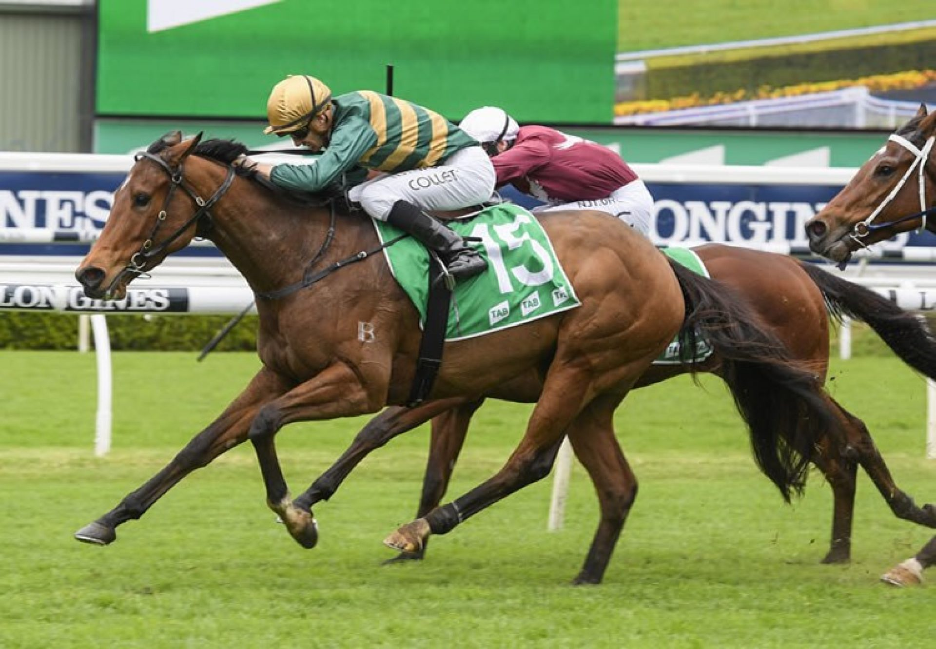 Yes Yes Yes winning the Everest