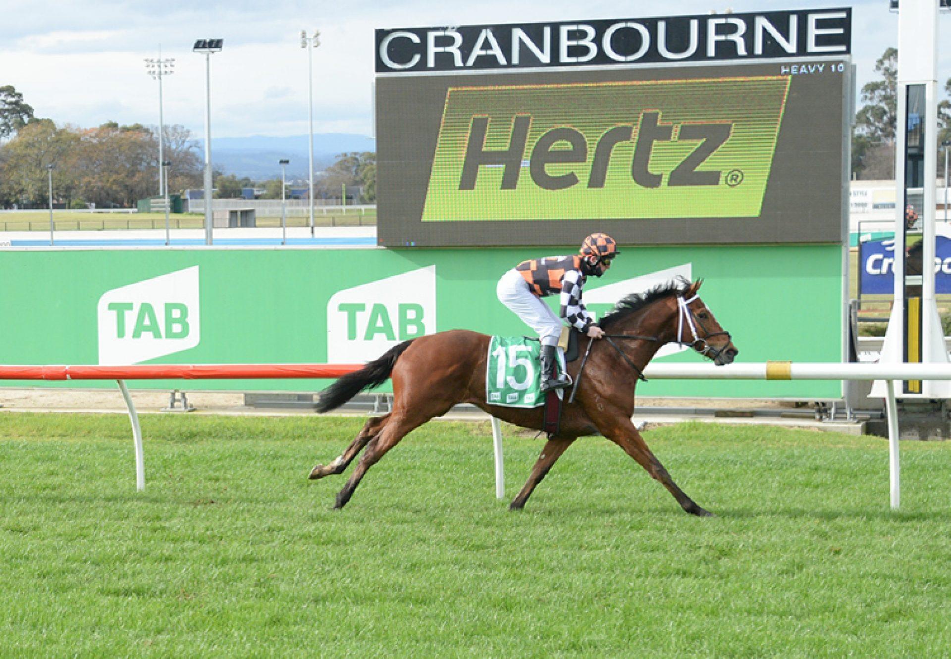 Blazerro (Pierro) winning at Cranbourne