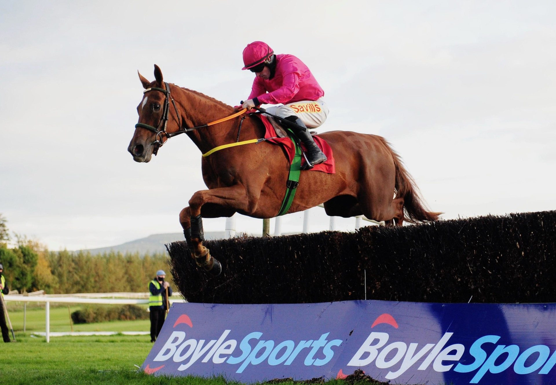 Brace Yourself (Mahler) Wins The Beginners Chase At Gowran Park