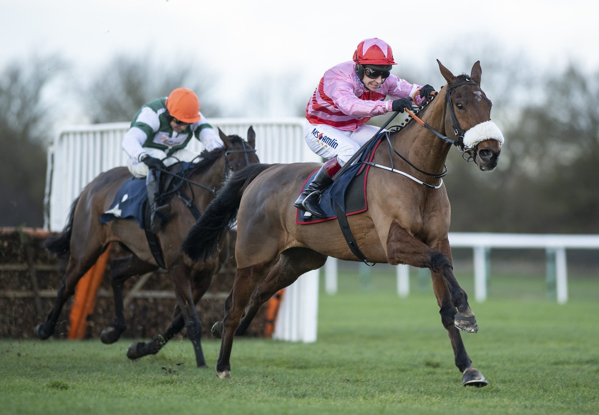 Brewin Upastorm (Milan) Impresses On His Hurdle Debut At Huntingdon