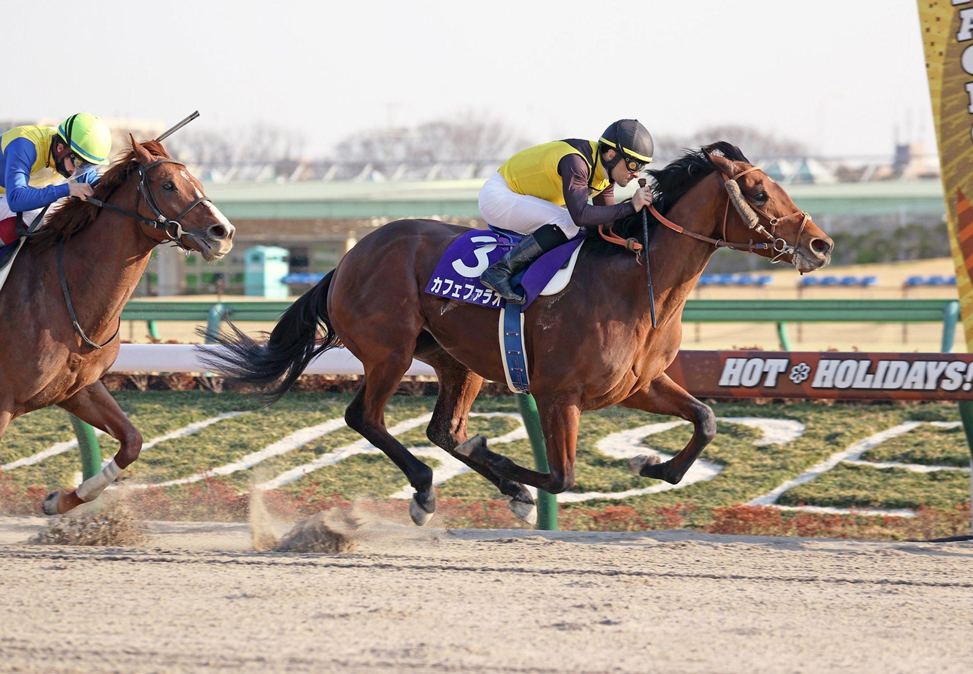 Cafe Pharoah (American Pharoah) wins the Gr.1 February Stakes in Japan