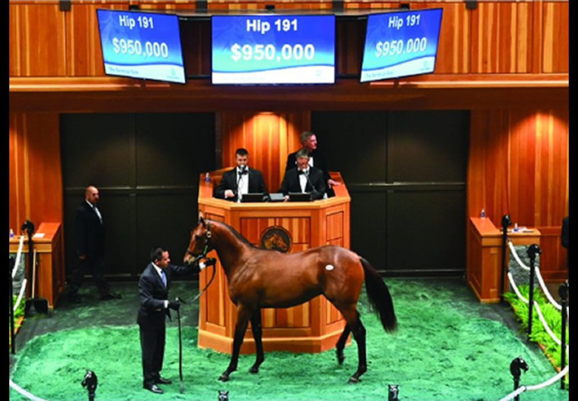 American Pharoah yearling colt ex Bon Jovi Girl selling for $950,000 at Saratoga