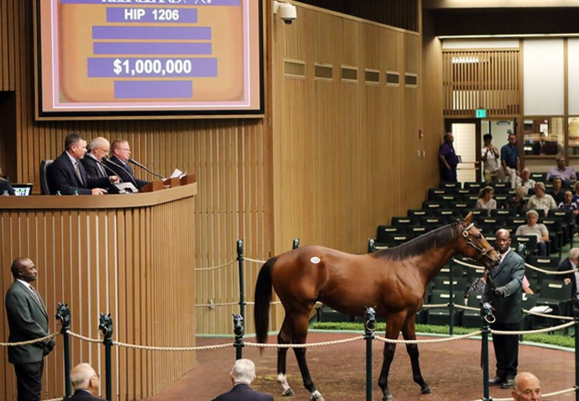 Uncle Mo ex Sweet Bliss yearling colt selling for $1 million at Keeneland