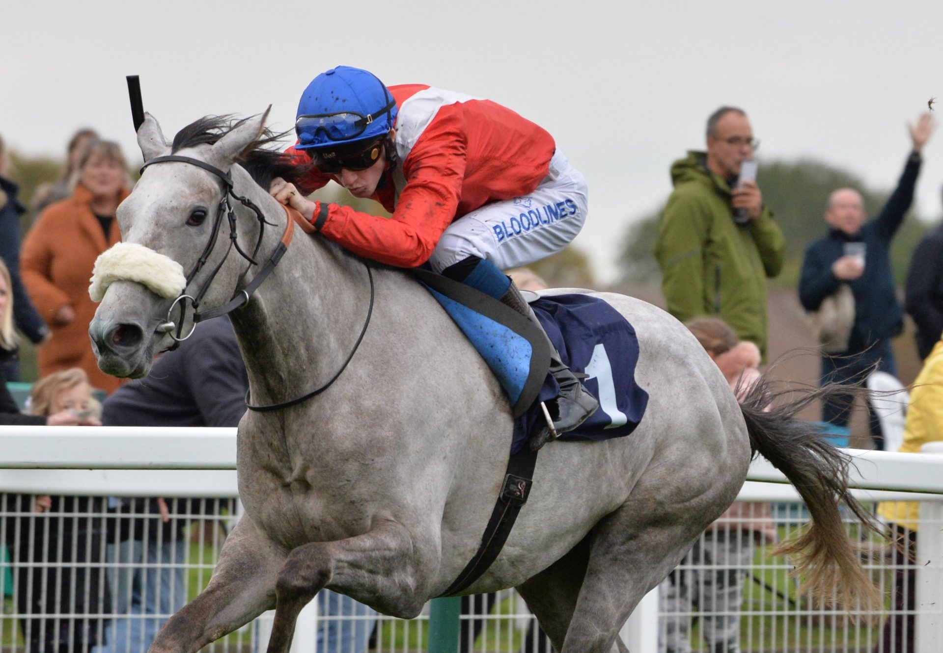 Cabaletta Becomes The Latest Winner By Mastercraftsman