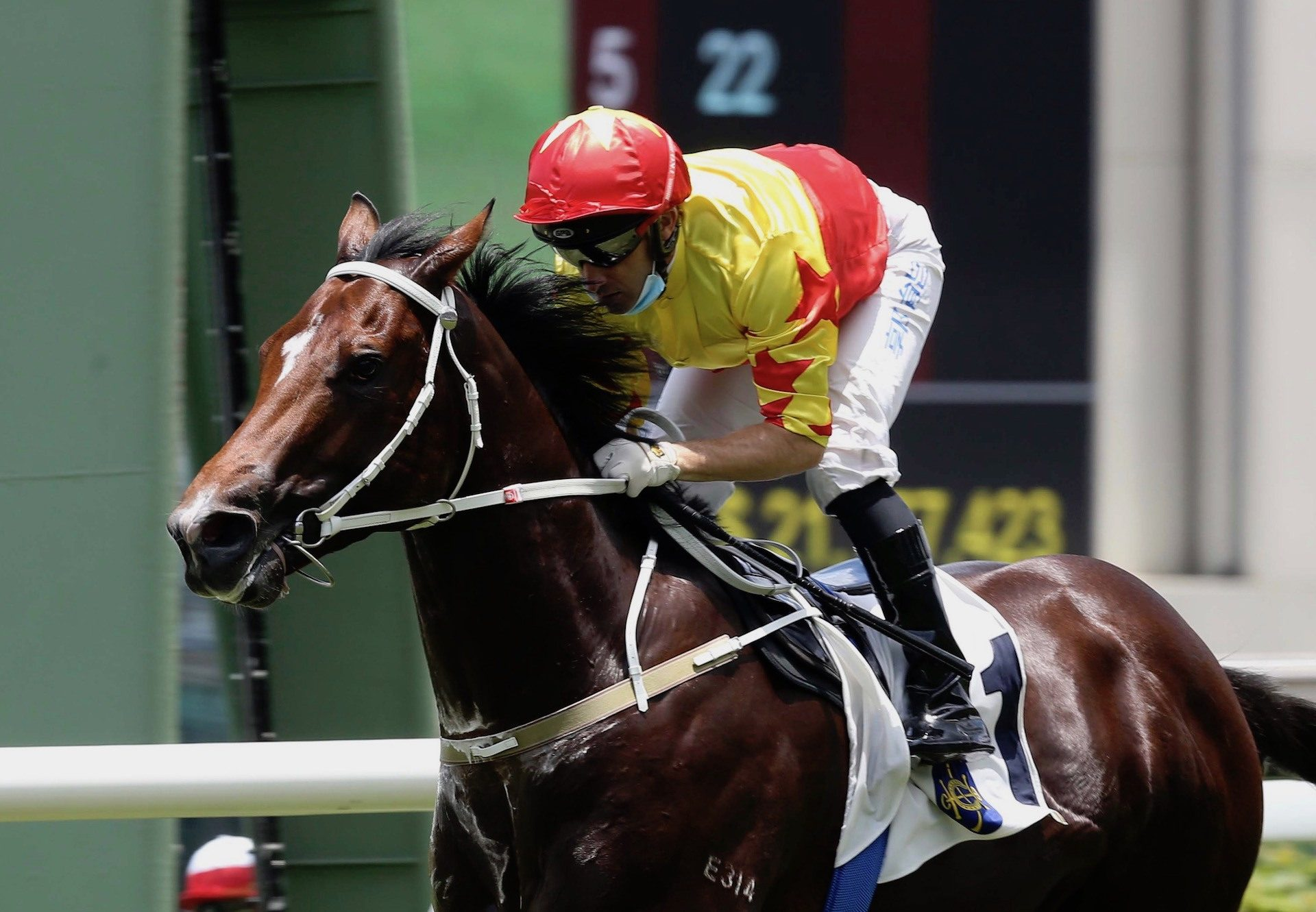 California Spangle (Starspangledbanner) Makes It Two From Two At Sha Tin