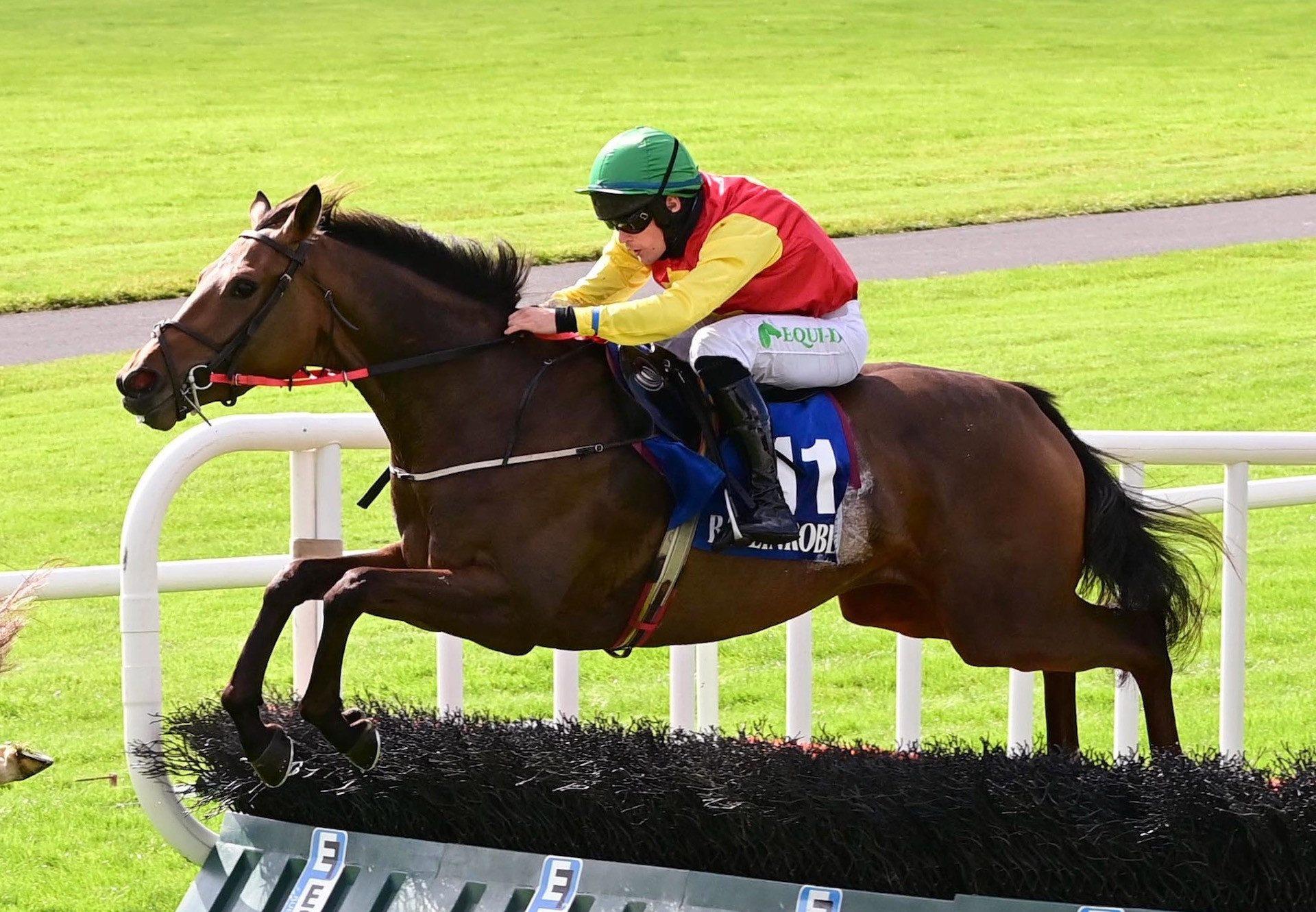 Calvados (Vadamos) Wins The 3YO Maiden Hurdle At Ballinrobe