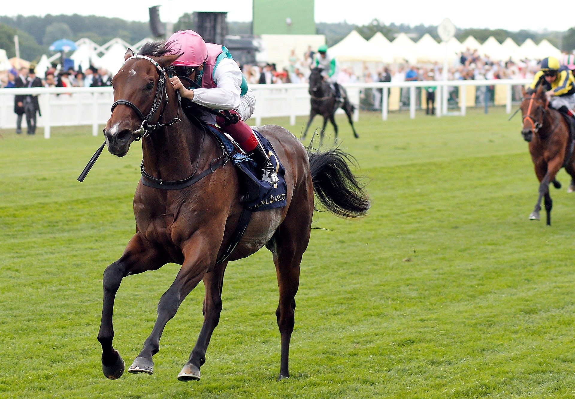 Calyx Wins The Coventry Stakes Web