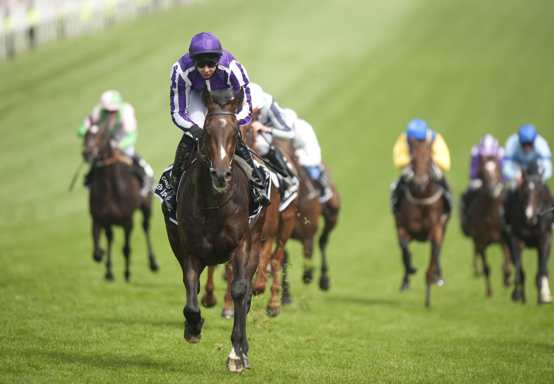 Camelot Epsom Derby