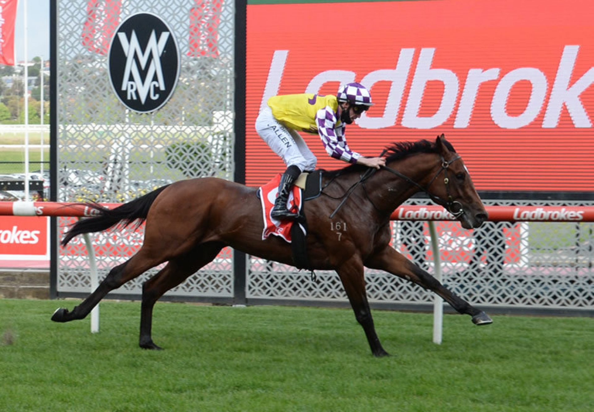 Captain Canuck (Vancouver) winning at Moonee Valley