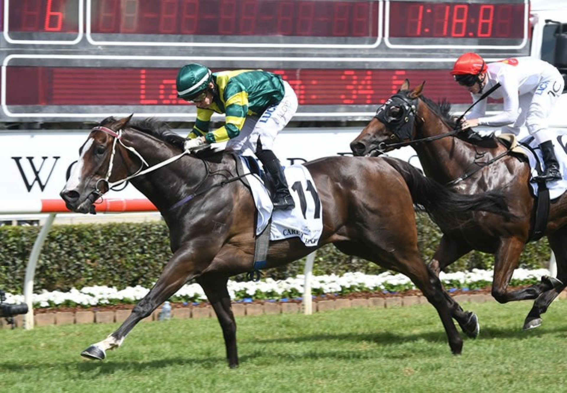 Care To Think (So You Think) winning the Woodford Reserve Magic Millions Cup at the Gold Coast