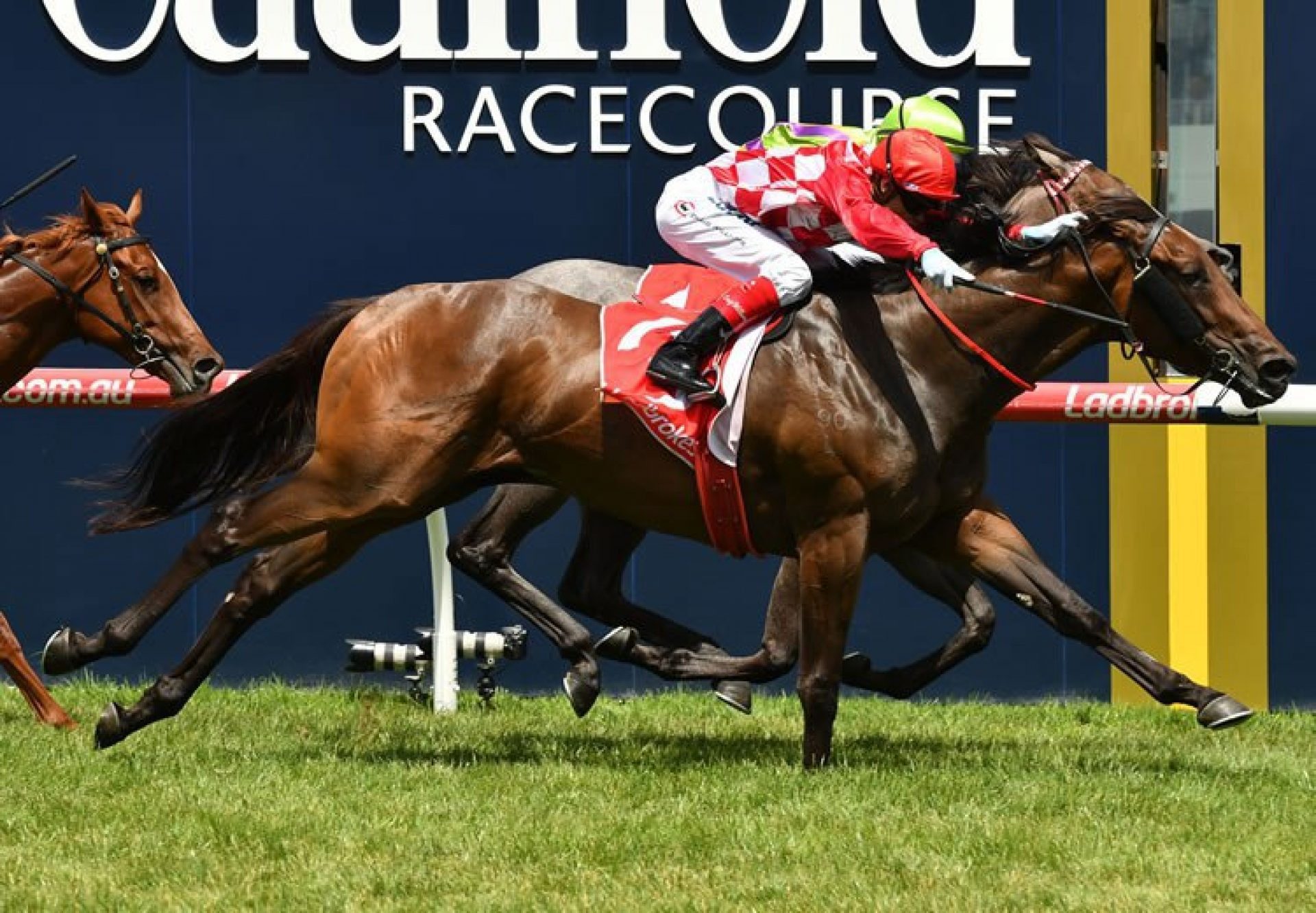 Catchy (Fastnet Rock) winning the G2 MRC Blue Diamond Prelude at Caulfield