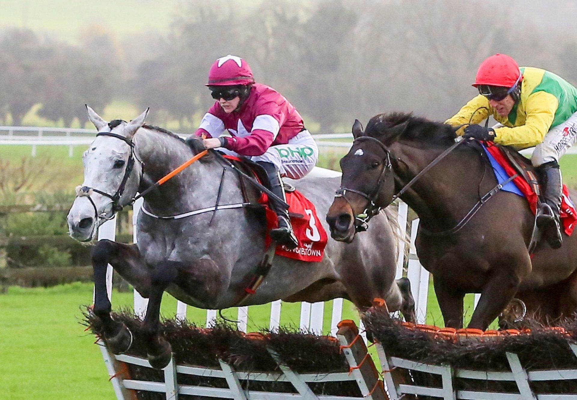 Cavalry Master (Milan) Wins At Punchestown