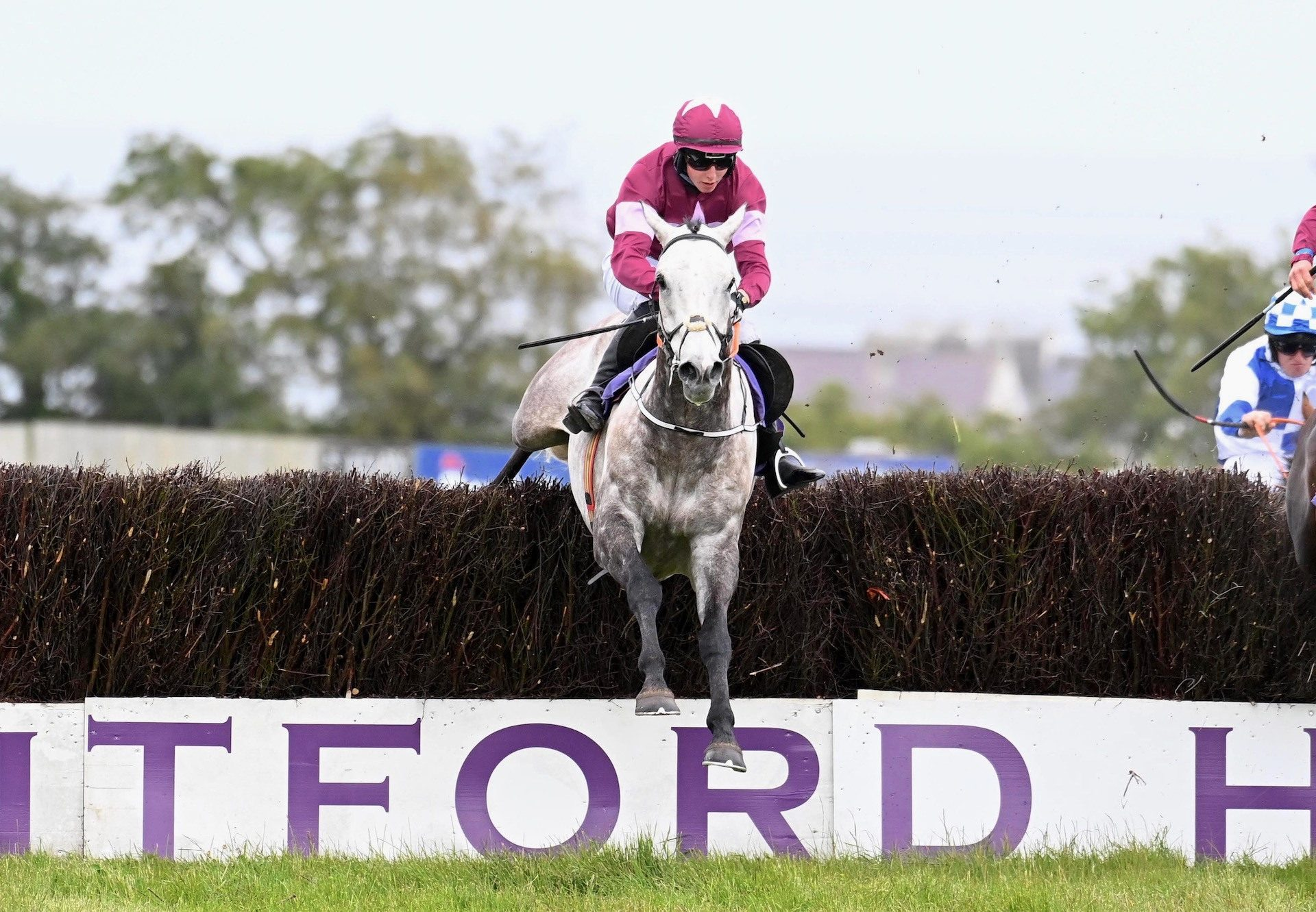 Cavalry Master (Milan) Wins The Novices Chase At Wexford