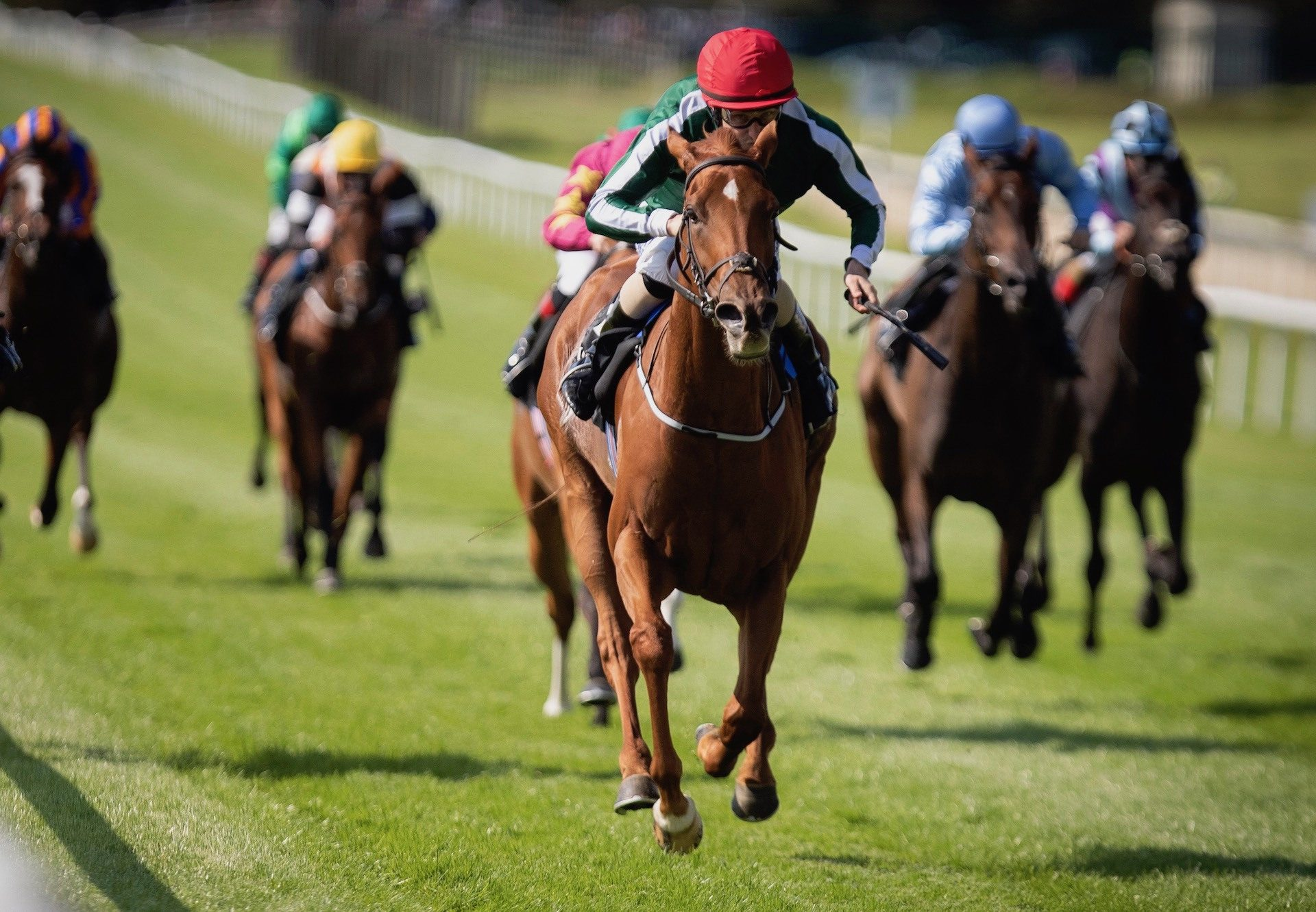 Cayenne Pepper (Australia) Wins The Gr.2 Blandford Stakes at the Curragh