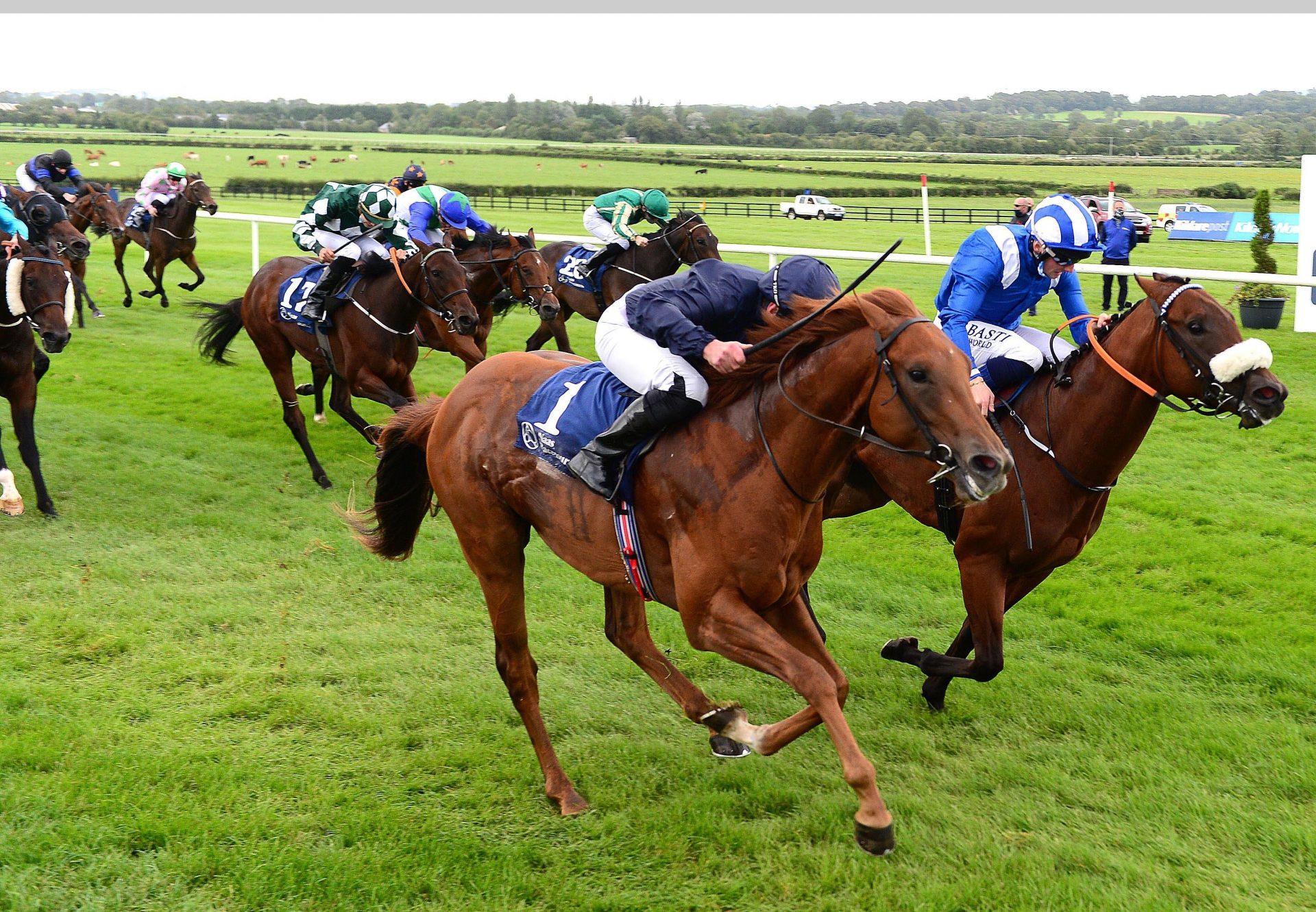 Chief Little Hawk (Air Force Blue) Wins the Irish EBF Ballyhane Stakes at Naas