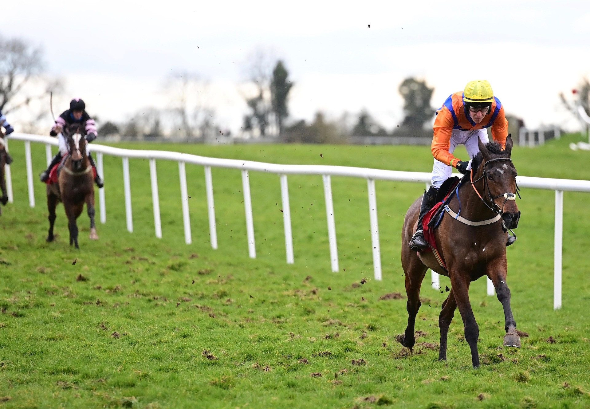 Choice Of Words (Yeats) Wins At Punchestown