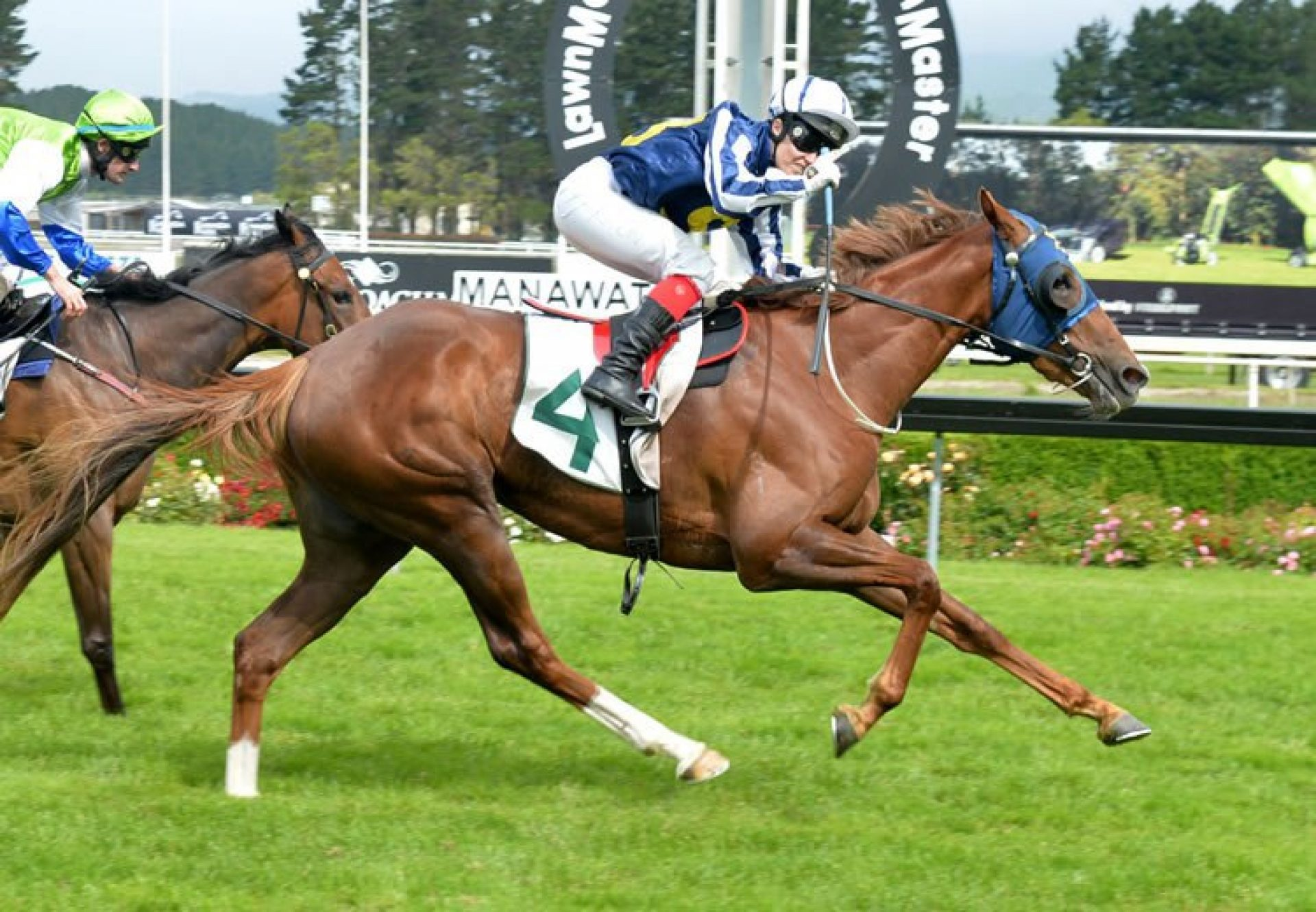Choice (Mastercraftsman) winning the Gr.3 Eulogy Stakes at Awapuni