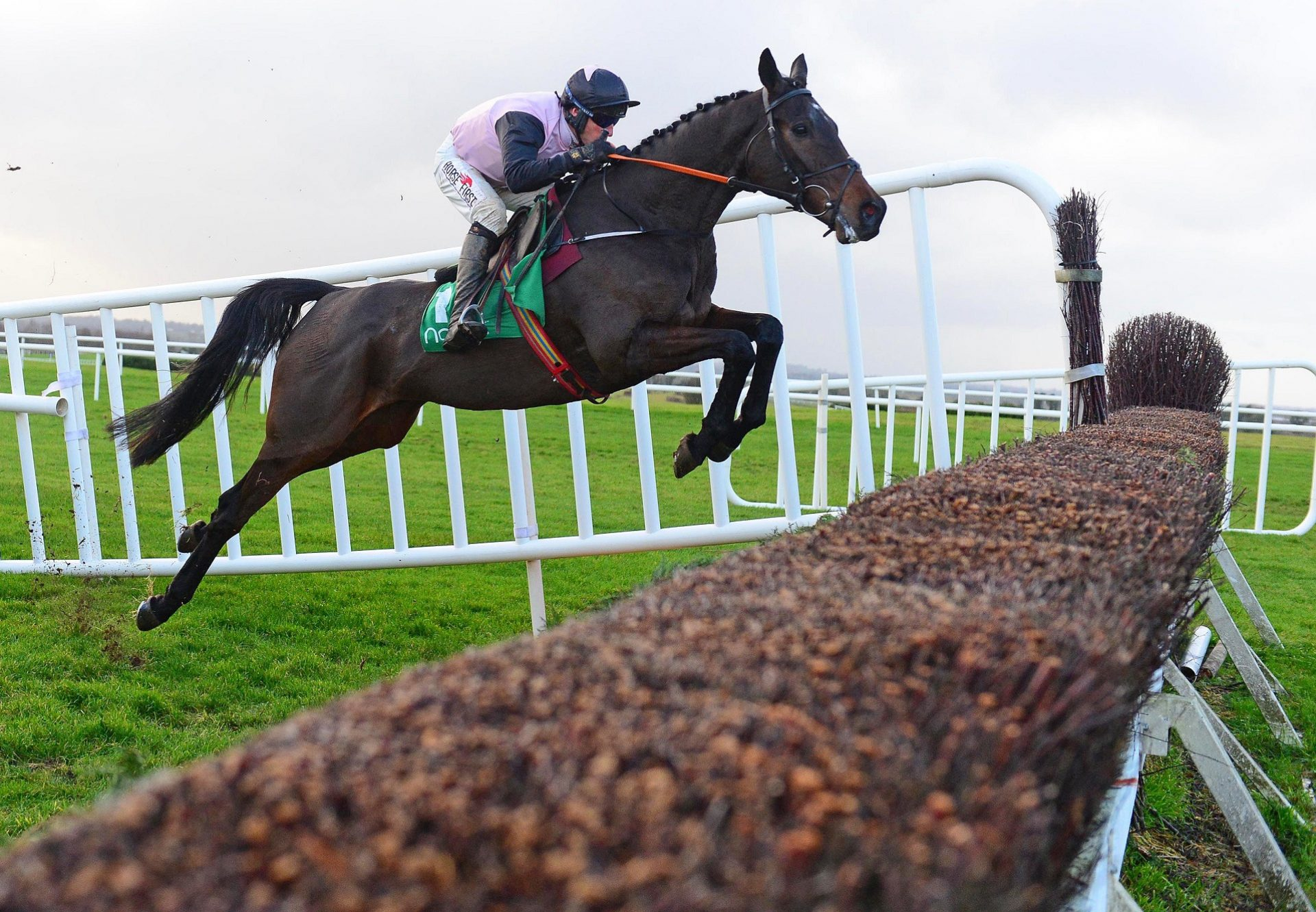 Chris's Dream (Mahler) winning a beginners chase at Navan