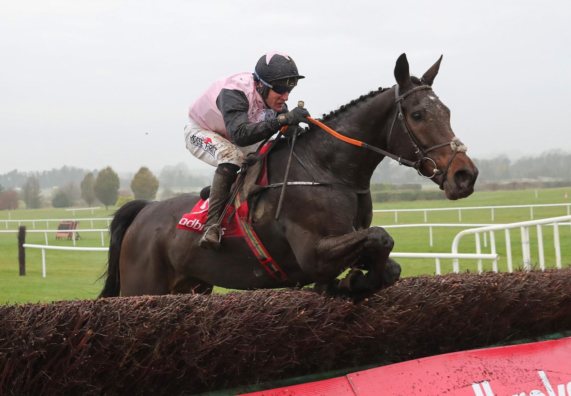 Chris's Dream (Mahler) Wins The Grade B Troytown Chase at Navan